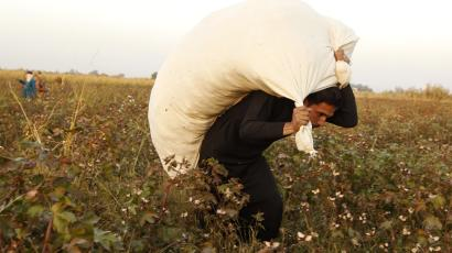 A man carries a sack of cotton after harvesting it on a field in the countryside of Raqqa, eastern Syria October 30, 2013.