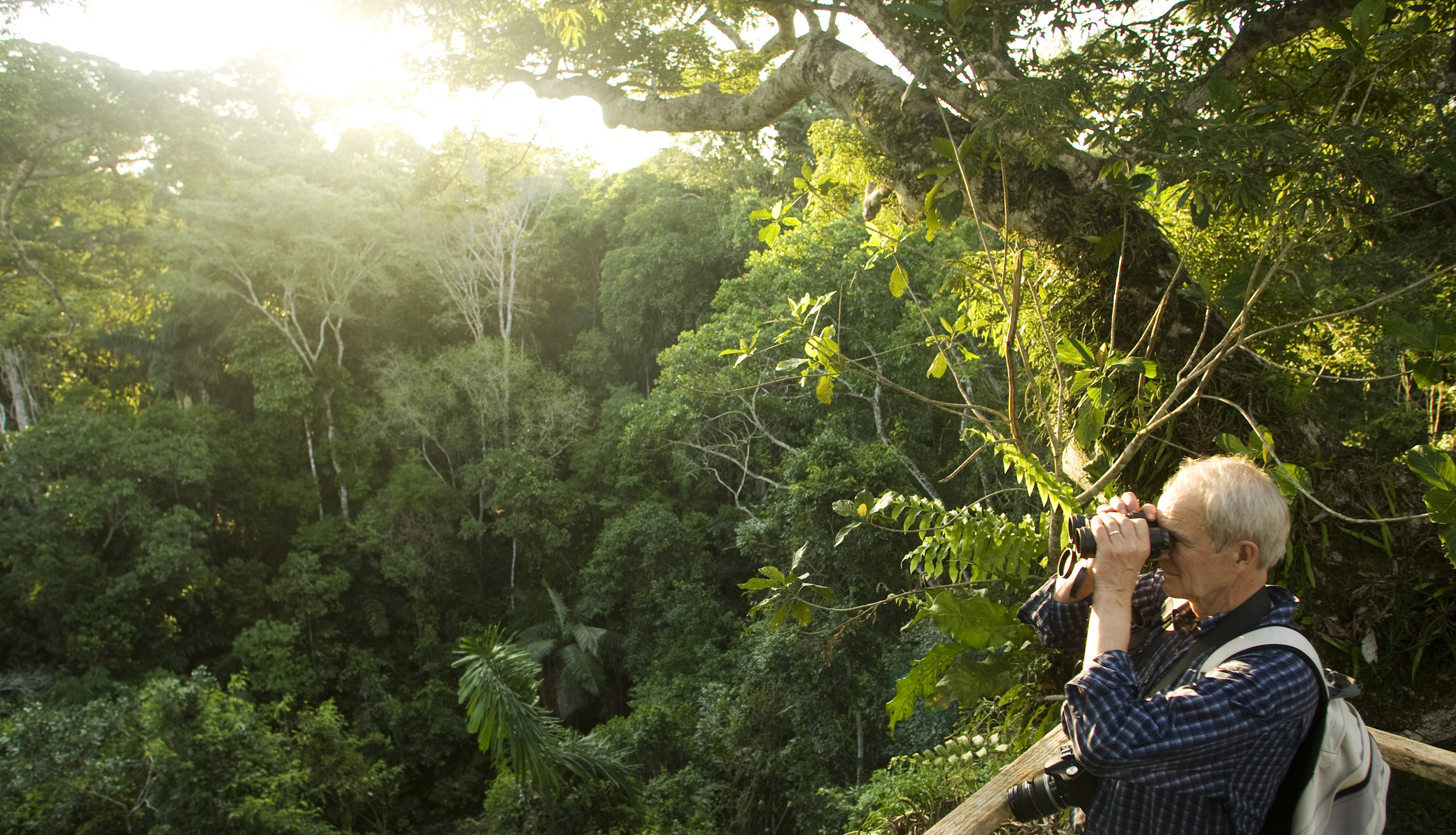 A tourist watches birds in the top of a canopy at the Manu Biosphere Reserve in Peru's southern Amazon region of Madre de Dios November 2, 2009. This 1.8 million hectares reserve is the home of 600 birds species and 11 monkey species among other animals, as caymans and mammals, and has one of the highest levels of biodiversity of any park in the world with more than 200 varieties of trees found in one hectare. Picture taken November 2, 2009. REUTERS/Enrique Castro-Mendivil (PERU ENVIRONMENT TRAVEL) - RTXQDQM