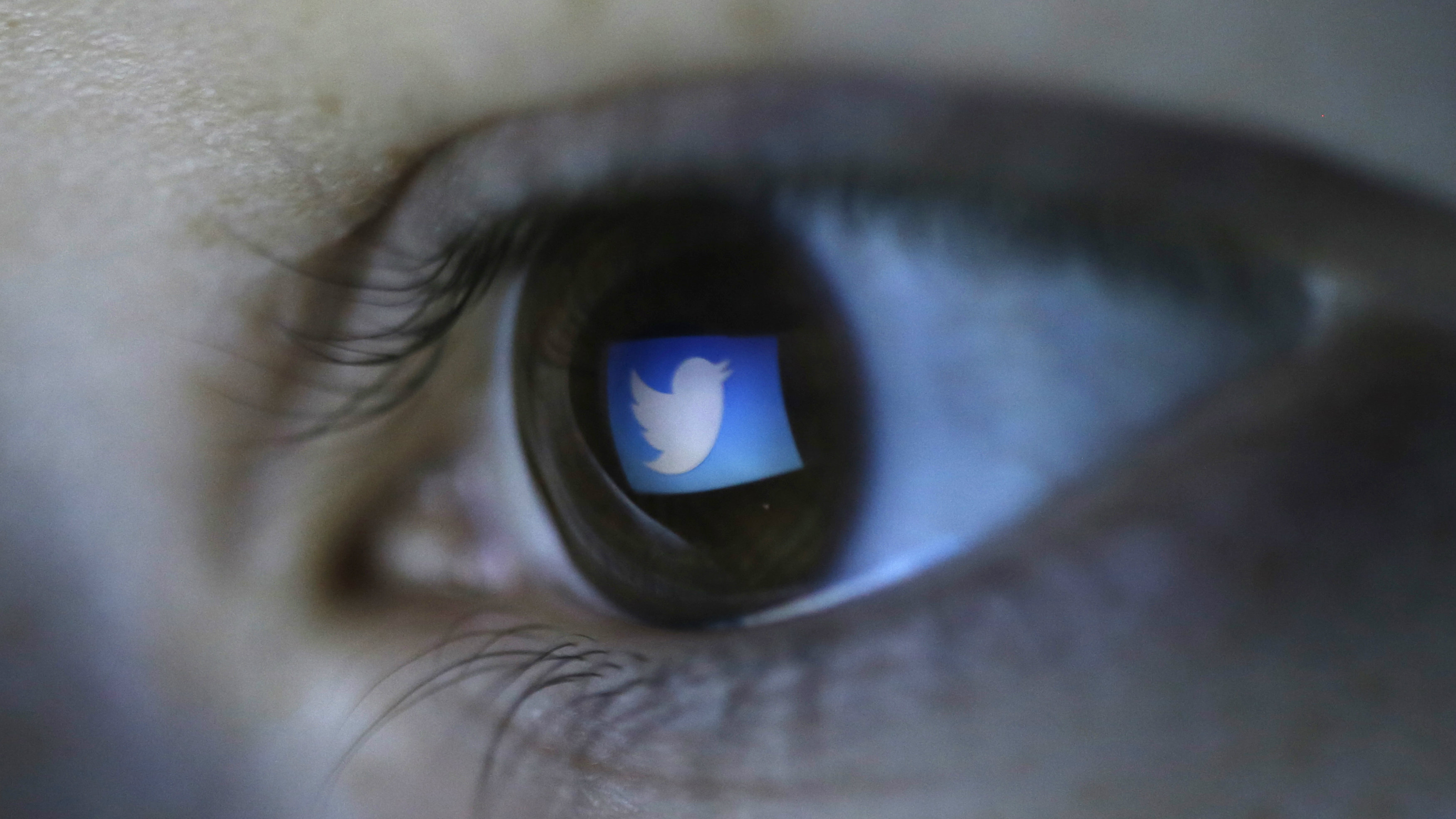 A picture illustration shows Twitter's logo reflected in a person's eye, in central Bosnian town of Zenica, March 13, 2015