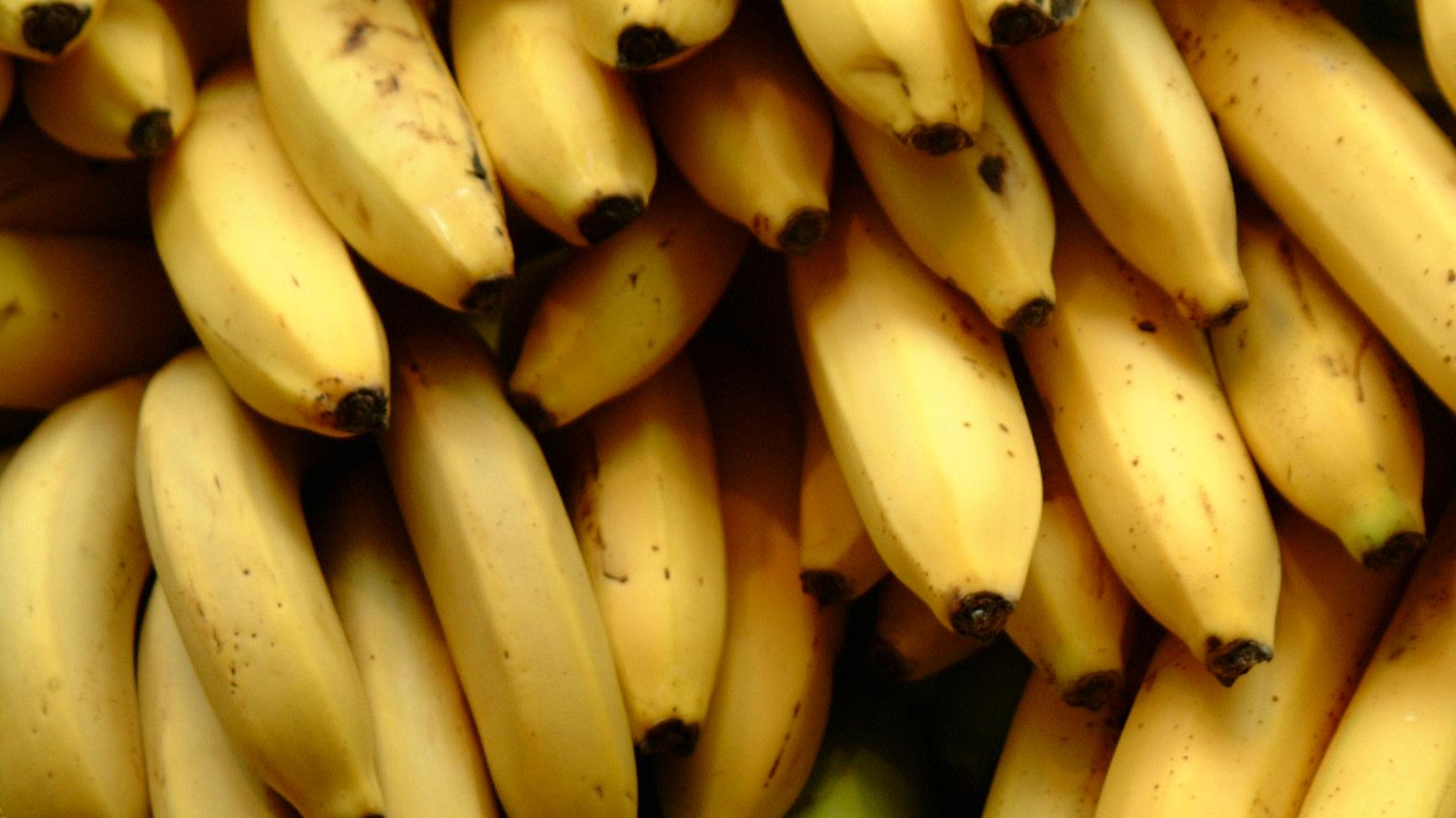 A new kind of banana.