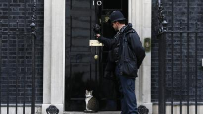 A police officer knocks on the door to allow Larry the cat back inside 10 Downing street.