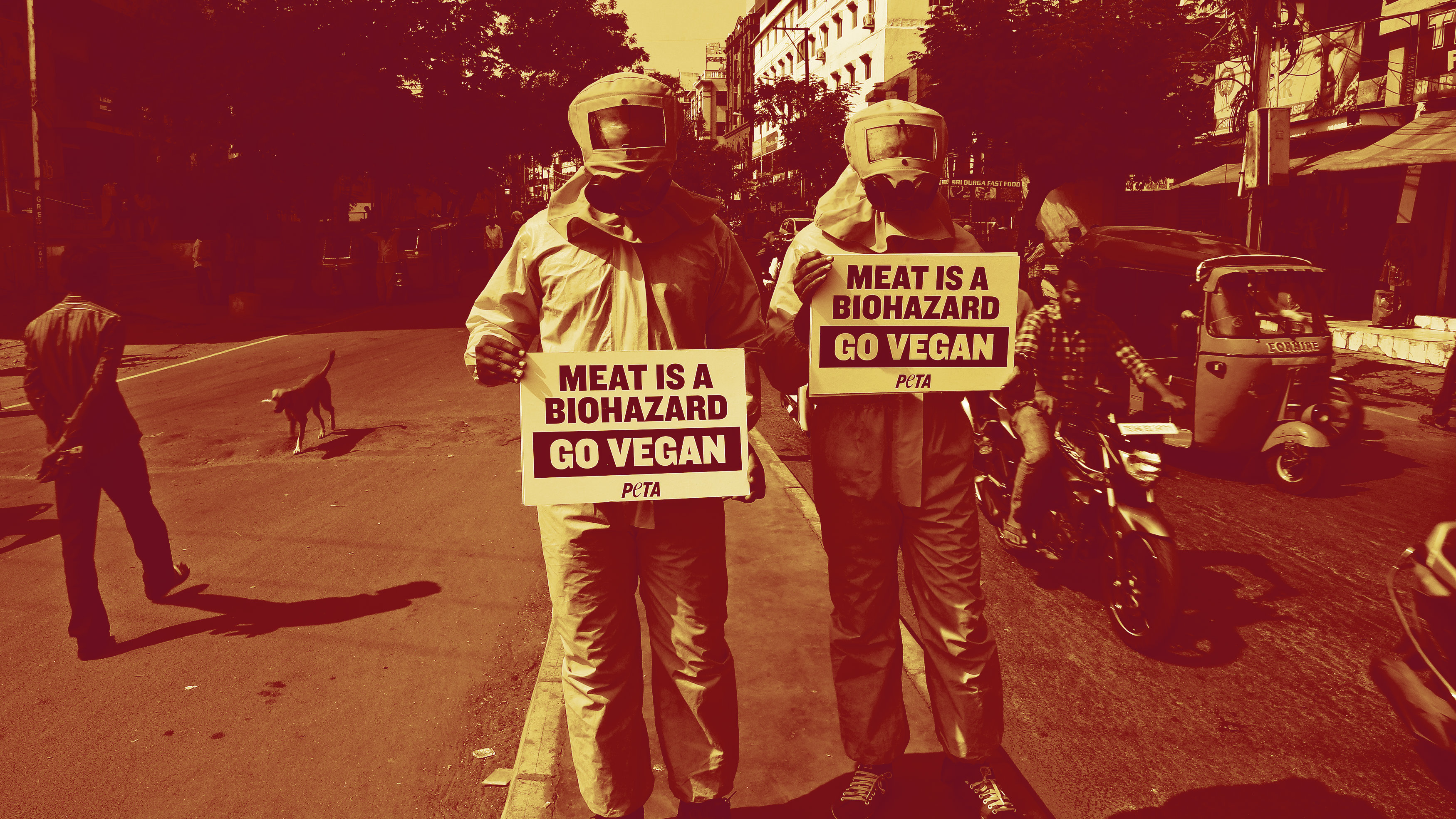 Indian activists for People for the Ethical Treatment of Animals (PETA) dressed in hazmat suits hold placards promoting veganism during a protest in Hyderabad.