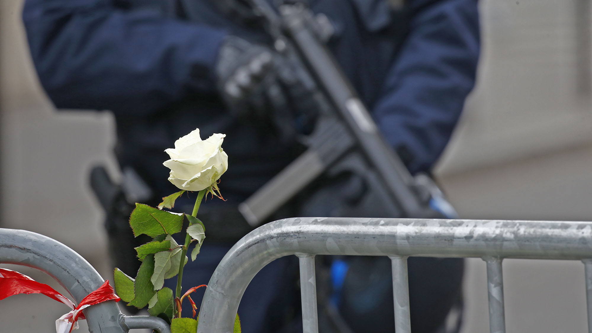 A white rose is attached to a barrier as a French policeman with an automatic weapon secures the area near the Bataclan concert hall the day after a series of deadly attacks in Paris, France, November 14, 2015.