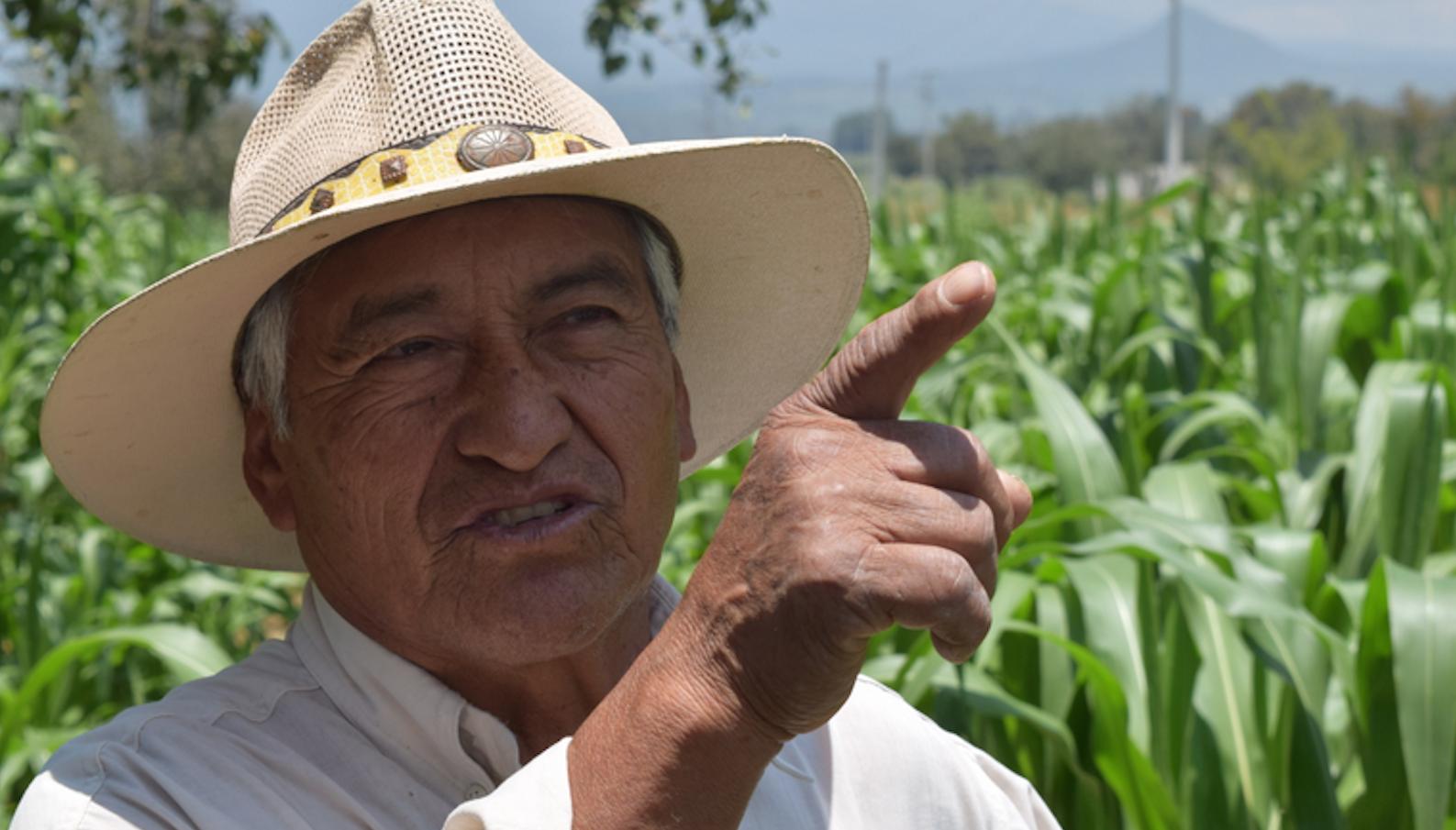 The future of farming?