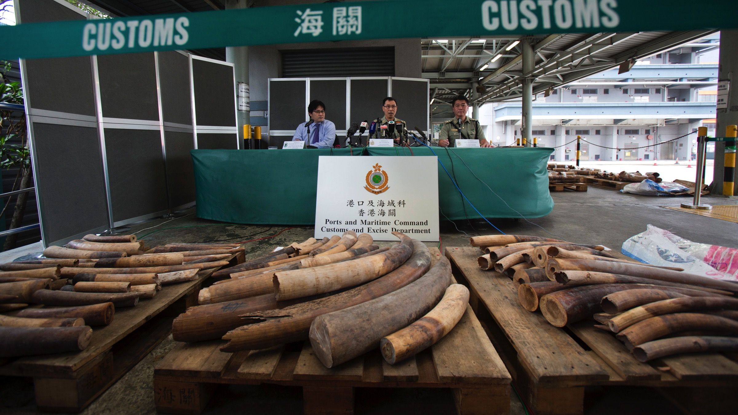 Officials hold a news conference regarding their seizure of illegal ivory, in Hong Kong