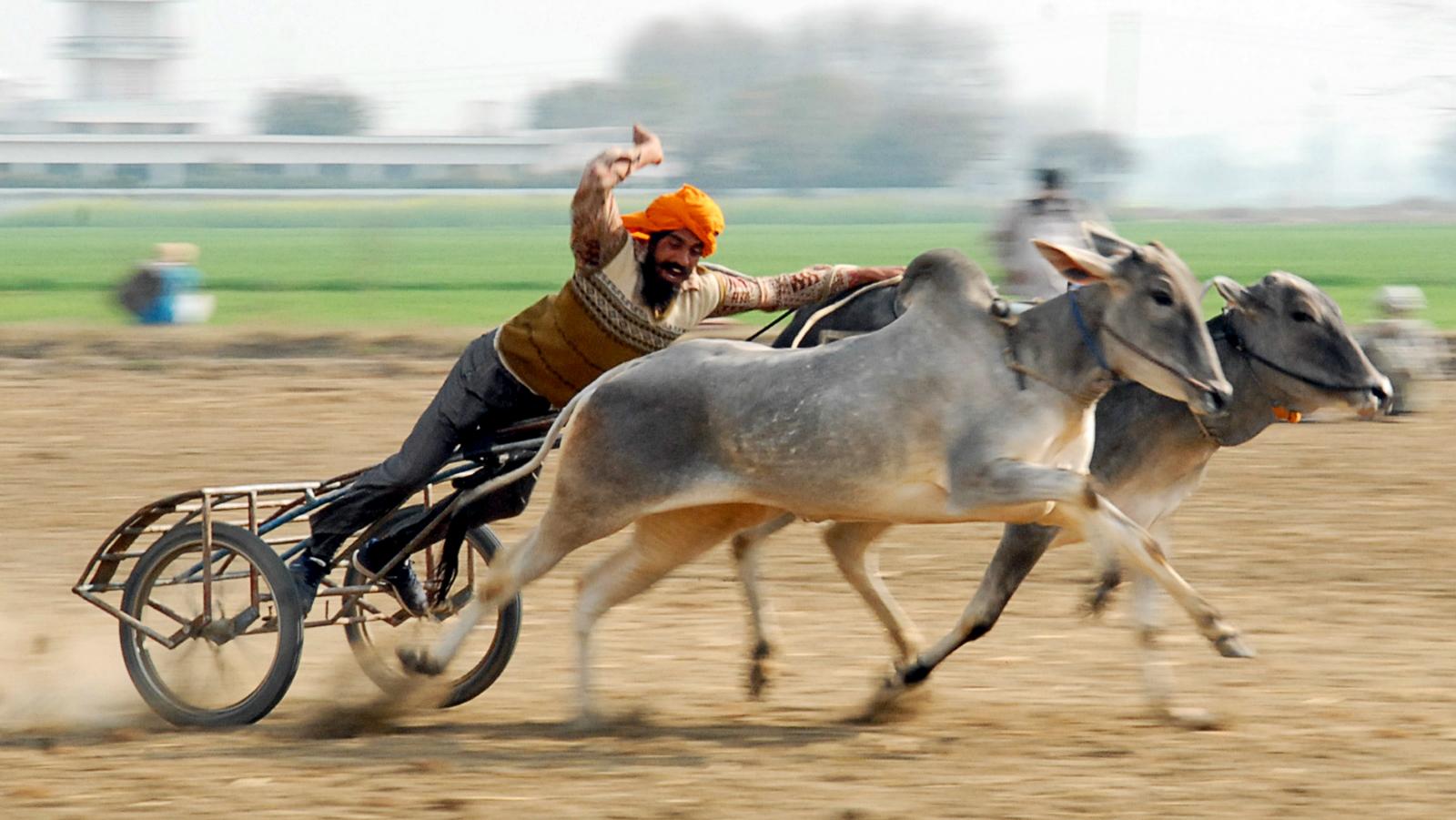 India-Punjab-industry