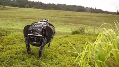 The US Marines won't be using Google's robot dogs because