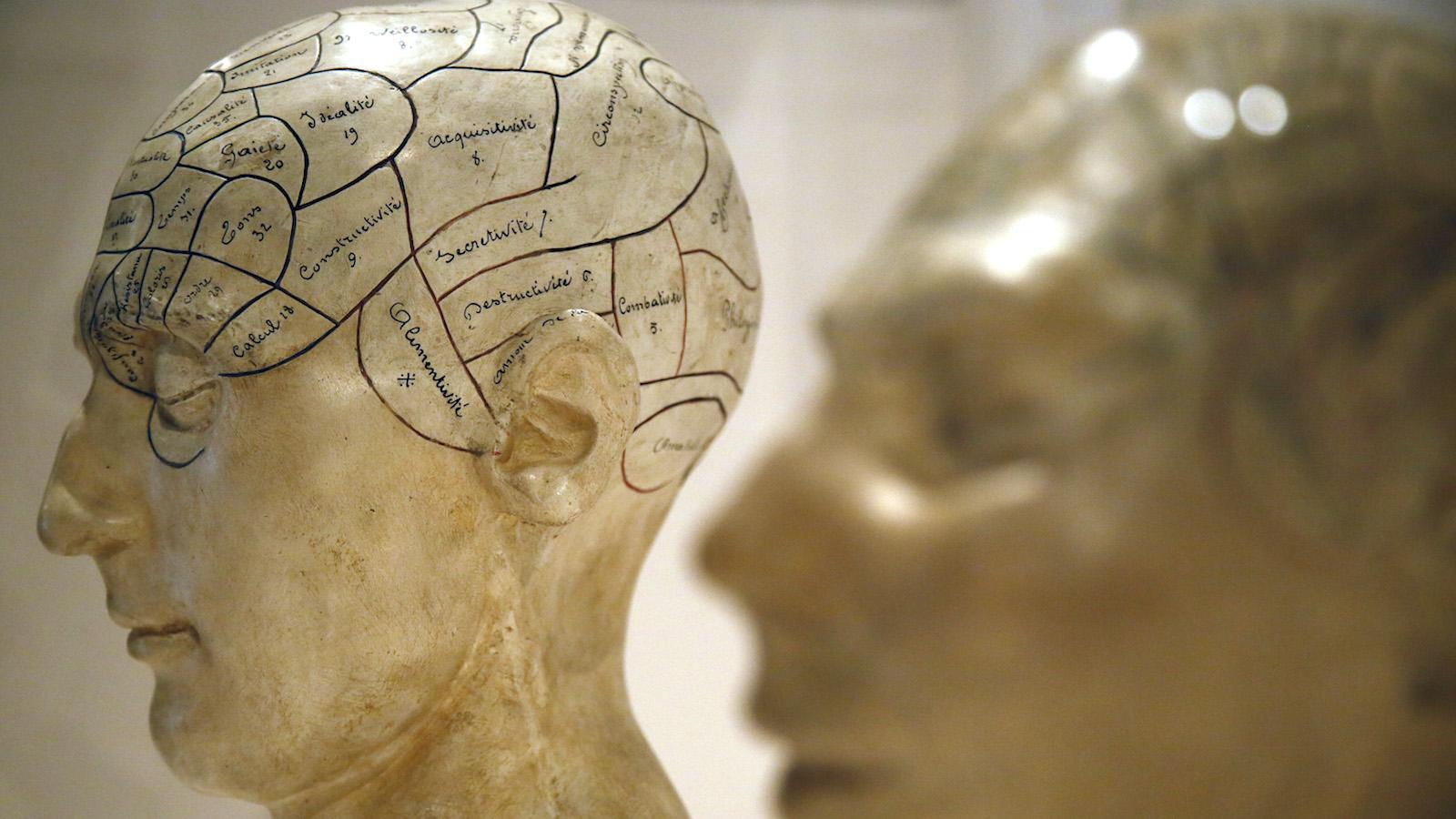 brains depression