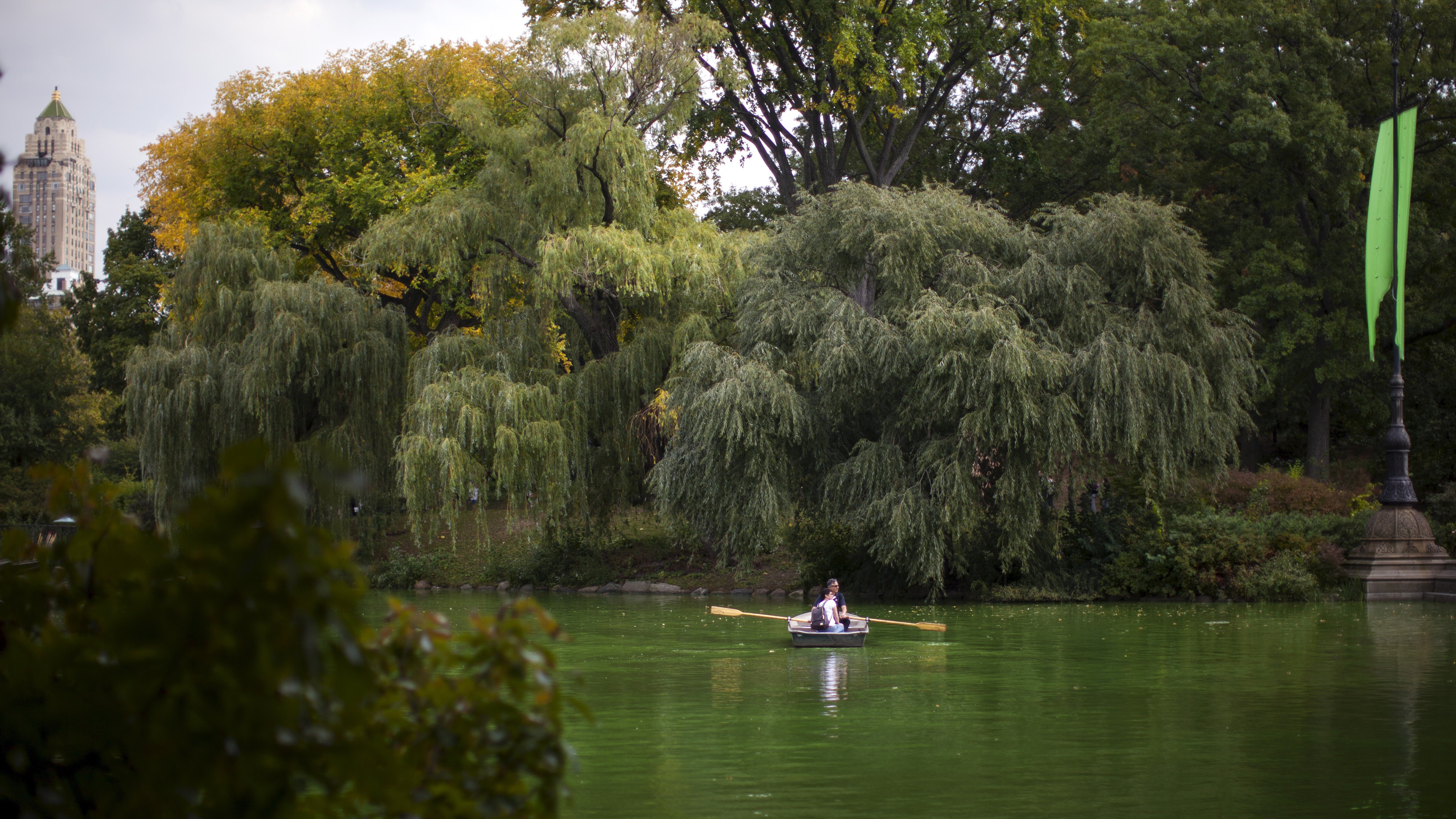 People row a boat on The Lake during a warm October afternoon as the first hints of fall colours appear on the trees in New York's Central Park in Manhattan, October 8, 2015. REUTERS/Mike Segar - RTS3MRX