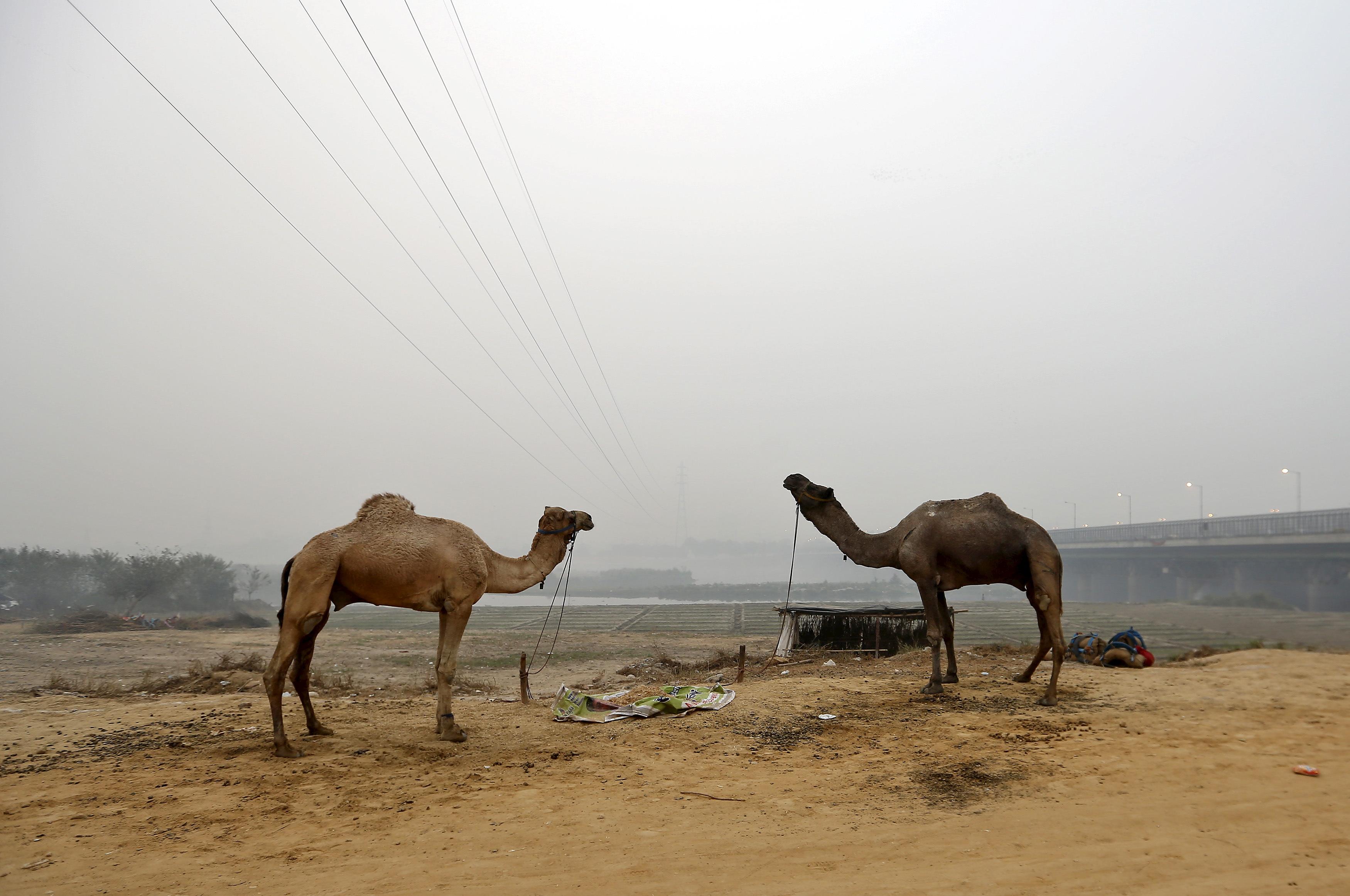 Air pollution-New Delhi-India-Narendra Modi-Paris talks