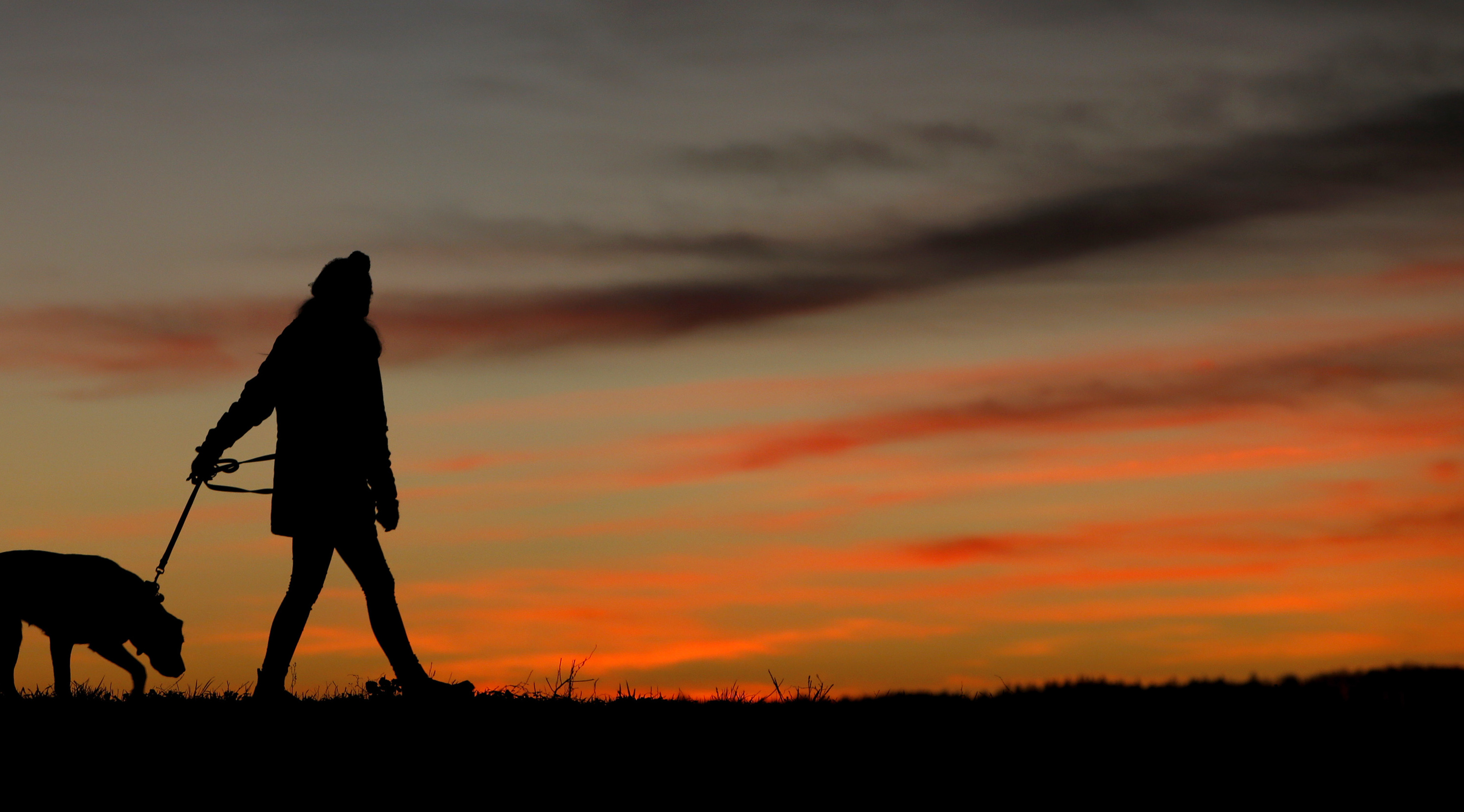A woman walking her dog is silhouetted against the sky at sunset in Pflaumdorf westward of Fuerstenfeldbruck, Germany, December 5, 2015. REUTERS/Michaela Rehle - RTX1XBLX