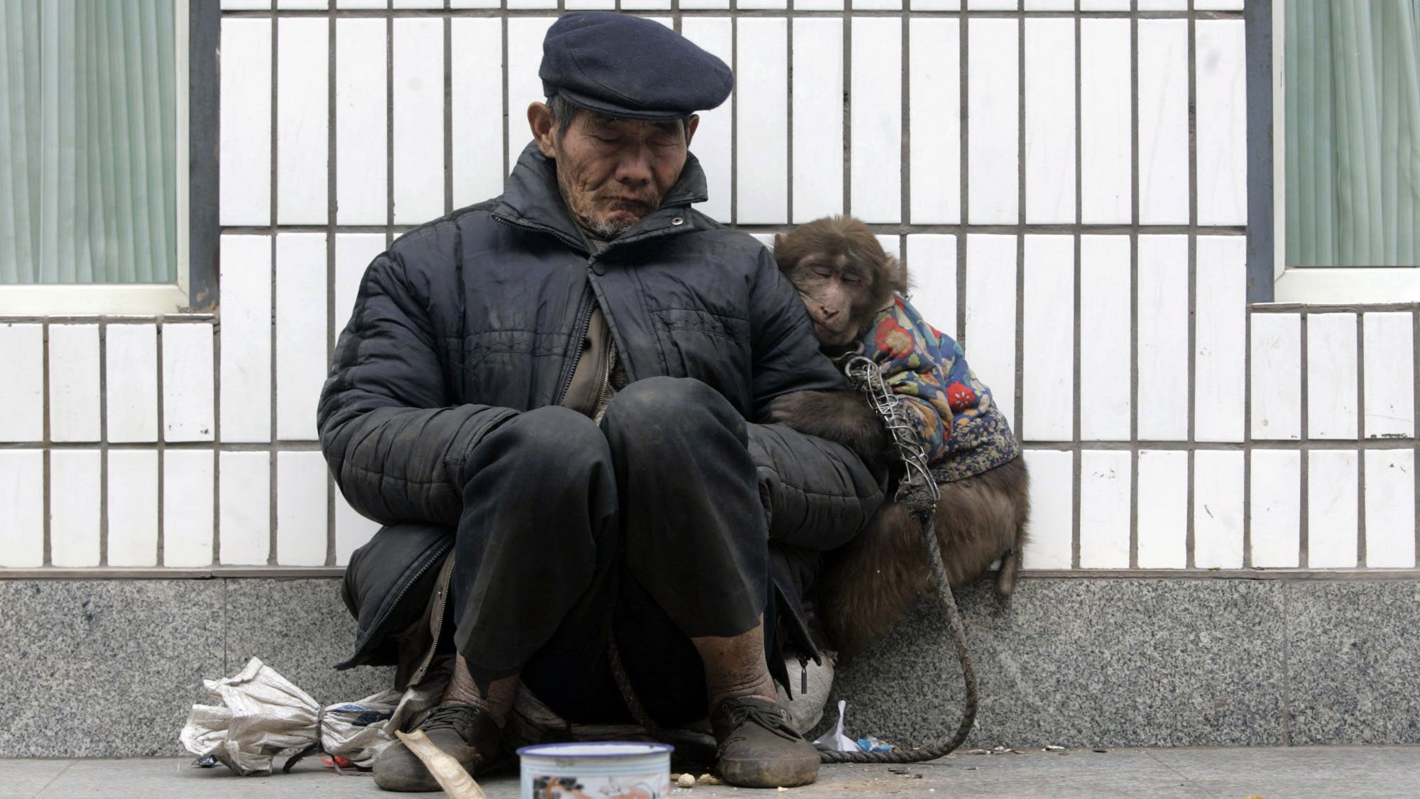A beggar naps with his monkey on a street in Chongqing municipality February 23, 2009. Picture taken February 23, 2009.