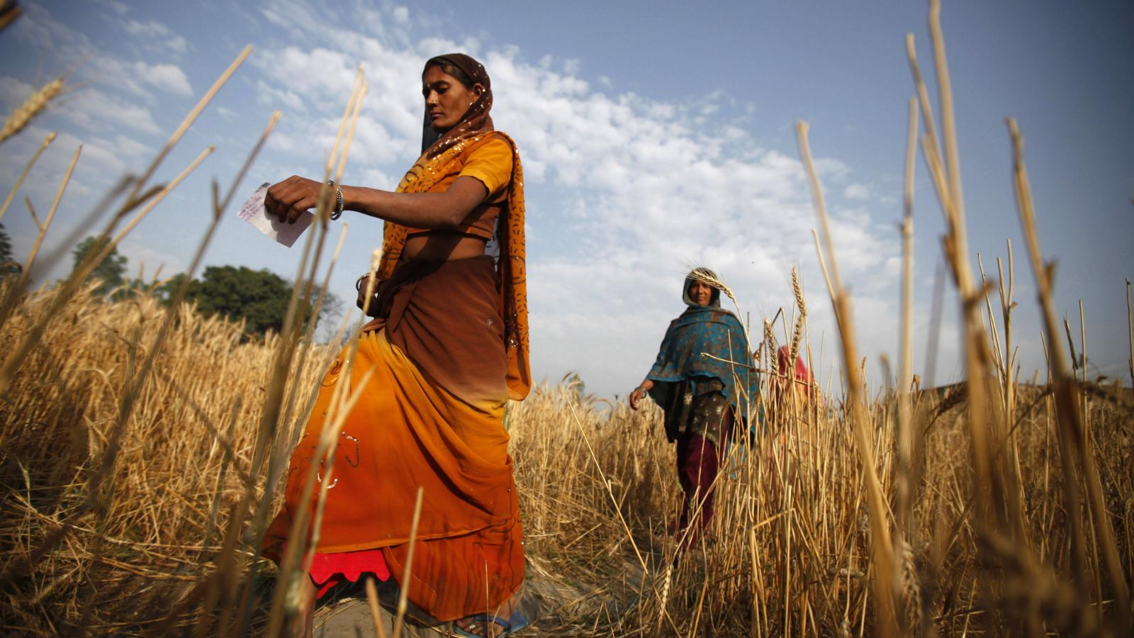 India-Free Basics-Facebook-Rural women-Internet.org-Net Neutrality