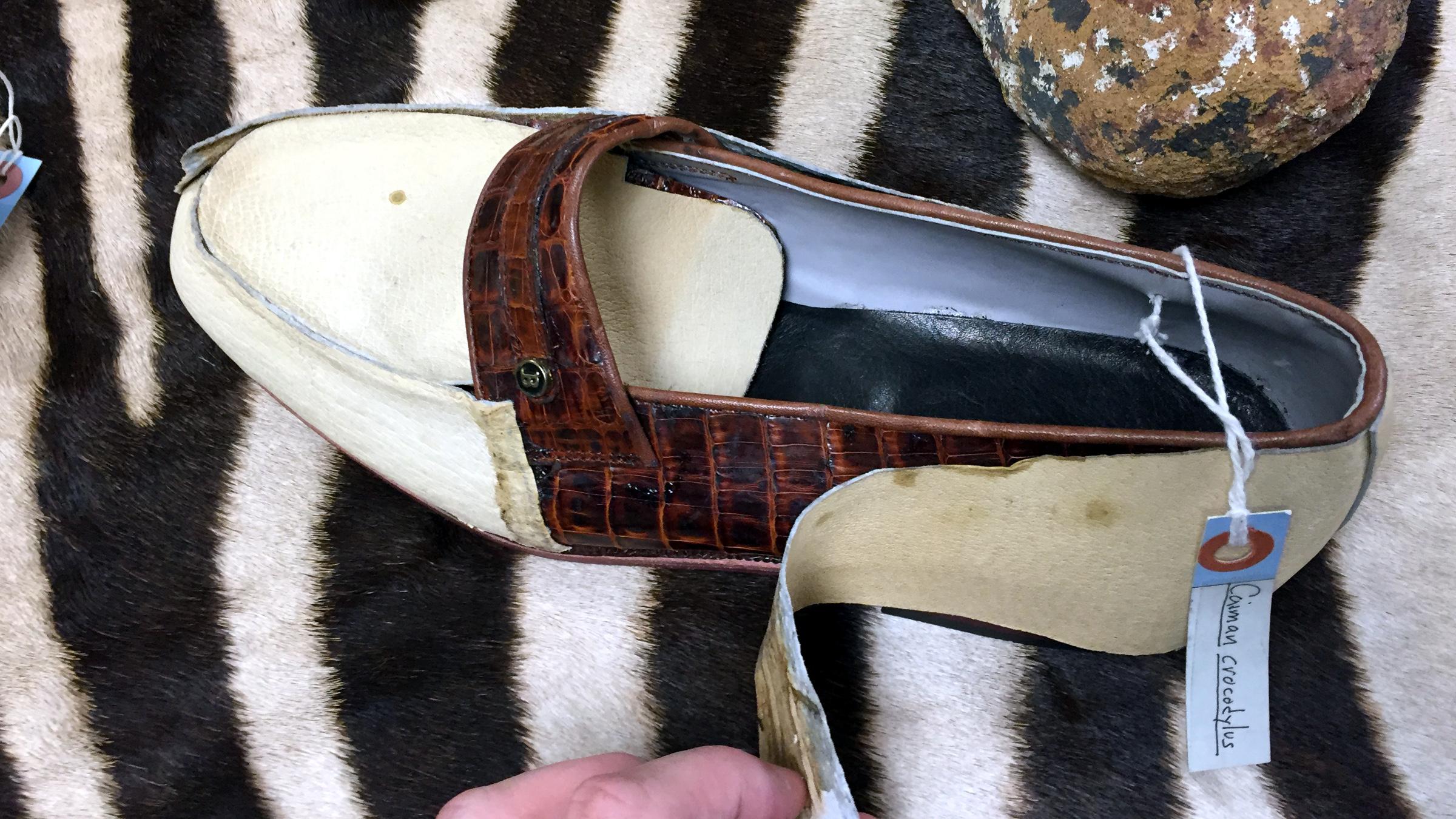 A Cayman crocodile skin shoe hidden behind cheap leather covering.