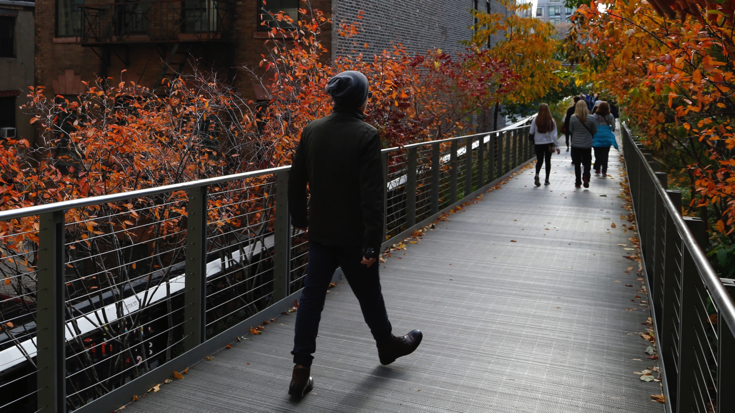 People walk along High Line park on a warm autumn day near foliage displaying fall colors in New York