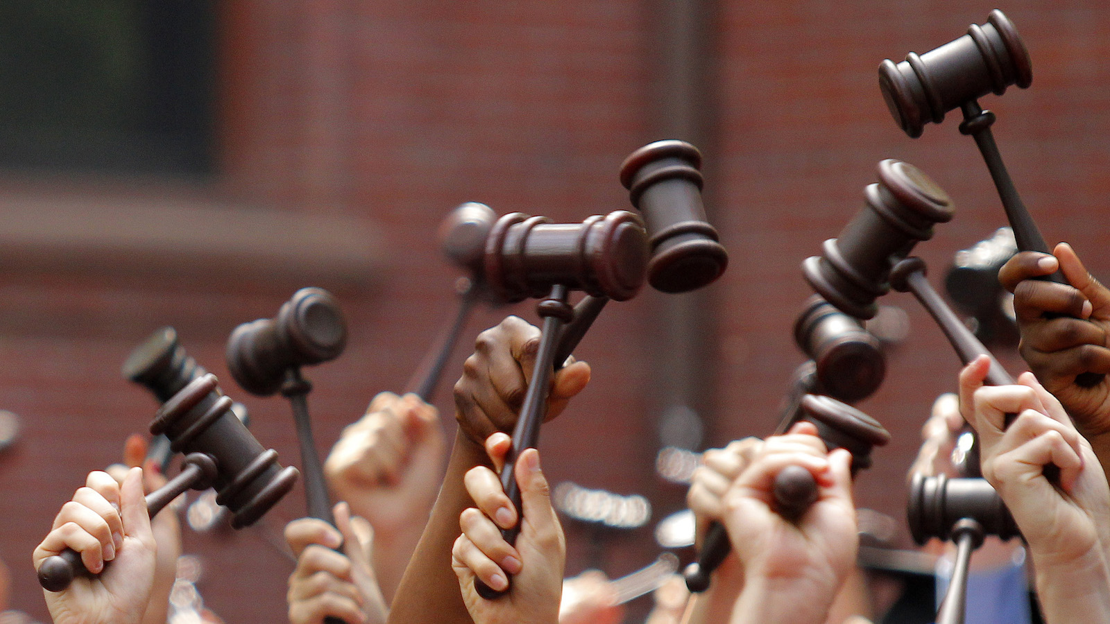 Graduates from the law school hold up gavels in celebration during their commencement at Harvard University in Cambridge, Massachusetts May 27, 2010.     REUTERS/Adam Hunger (UNITED STATES - Tags: EDUCATION IMAGES OF THE DAY) - RTR2EFVD