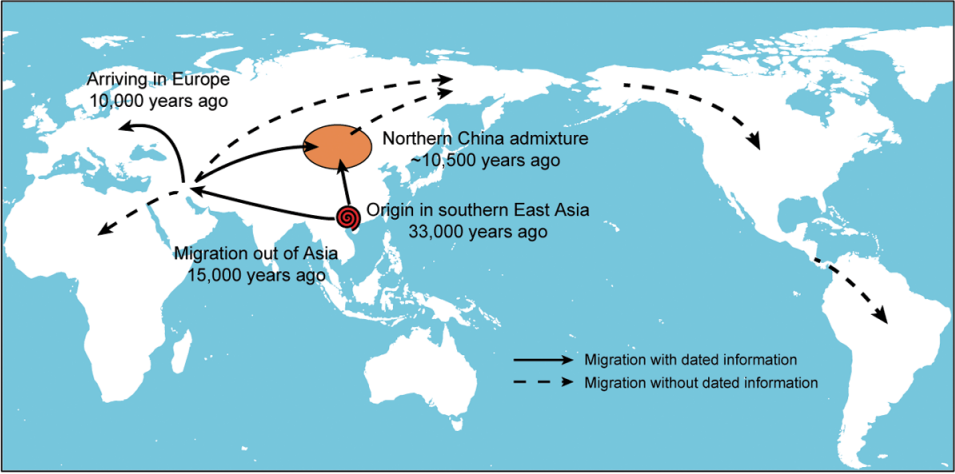 A map of the migration of early dog breeds