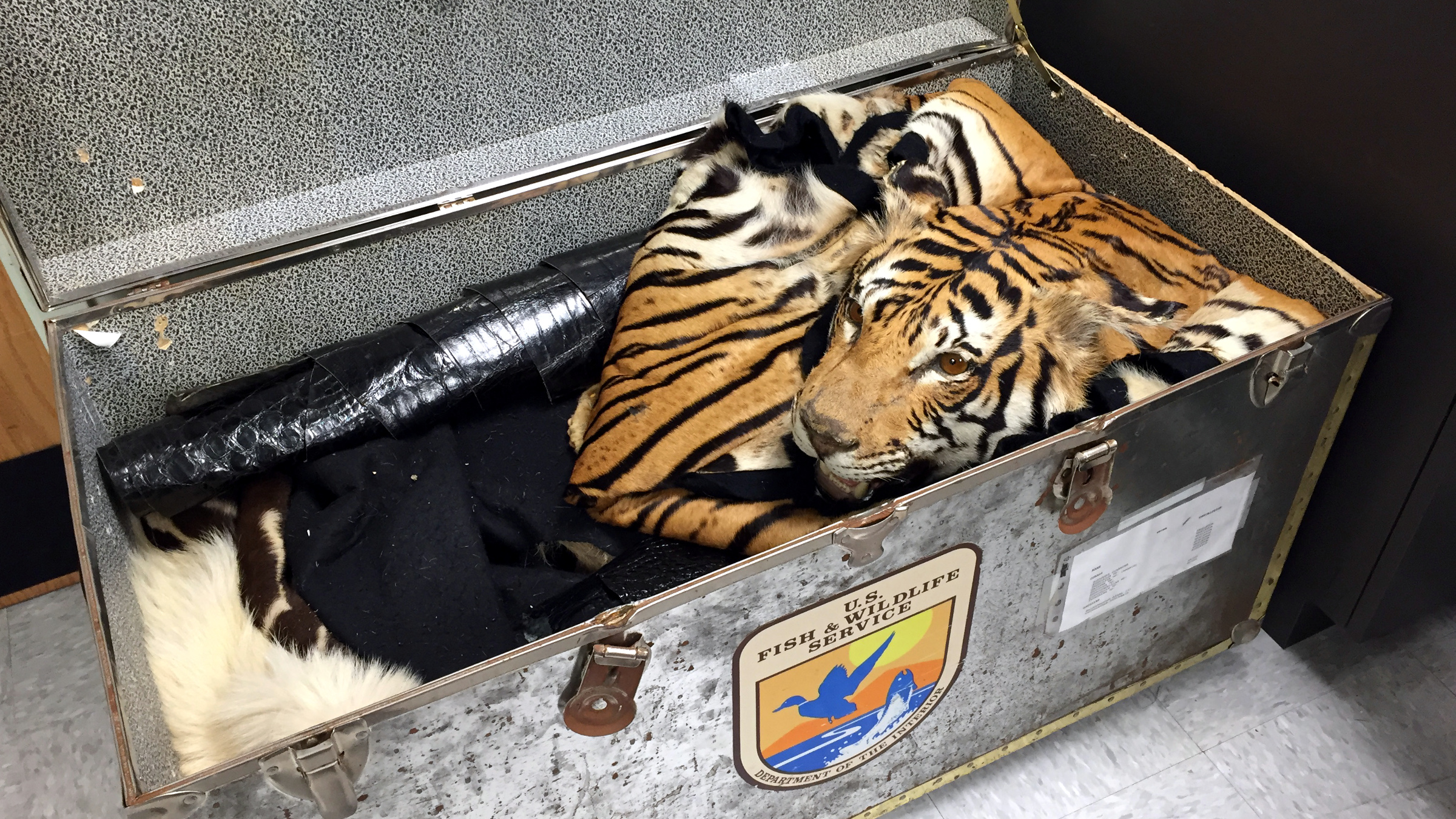 A crate of animal skins.