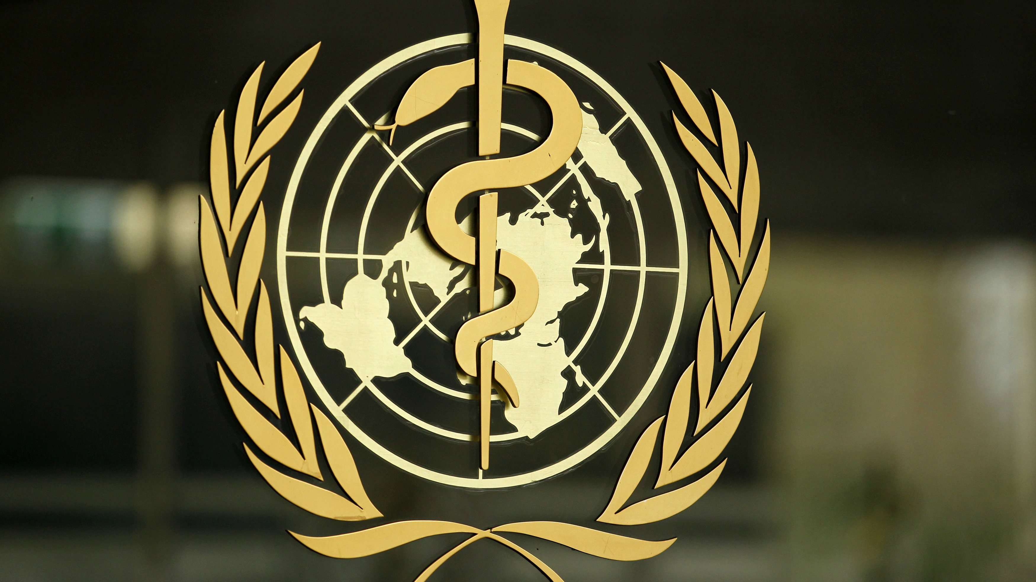 The World Health Organization (WHO) logo is pictured at the entrance of its headquarters in Geneva, January 25, 2015.