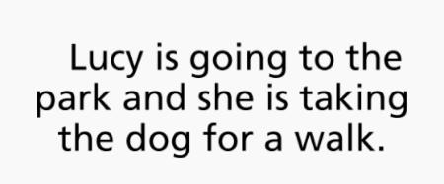 lucy dog walk