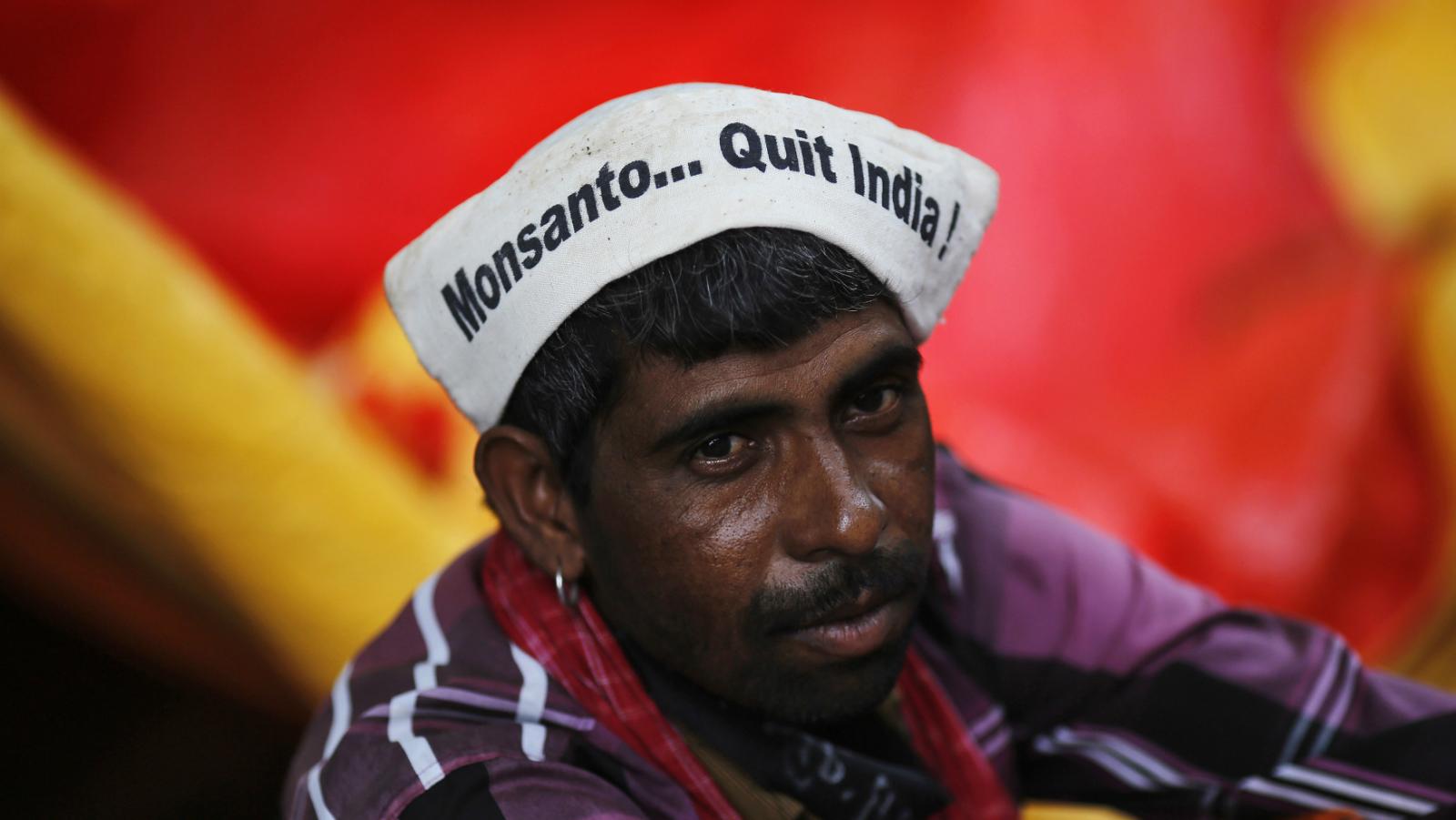 Monsanto-Bt Cotton-India-Agriculture-Narendra Modi
