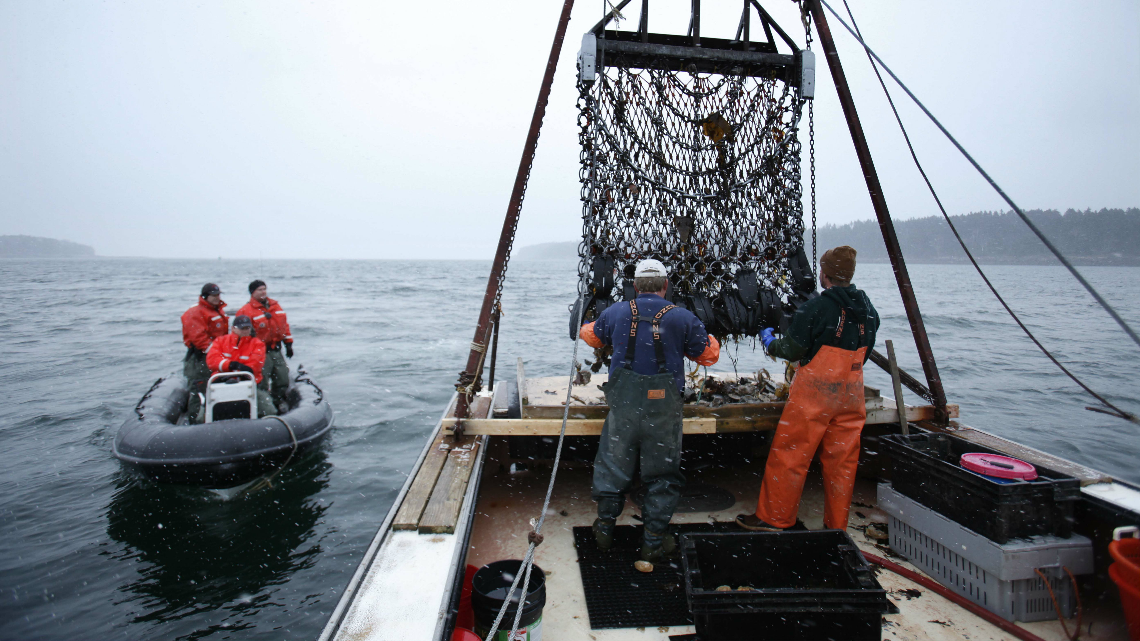In this photo made Saturday, Dec. 17, 2011, Marine Patrol officers, left, arrive for a routine inspection aboard scallop fisherman Donald Ricker's boat off Harpswell, Maine. Maine scallops are high quality because they're brought to shore the same day that boats drag them off the ocean floor or divers harvest them by hand. (AP Photo/Robert F. Bukaty)