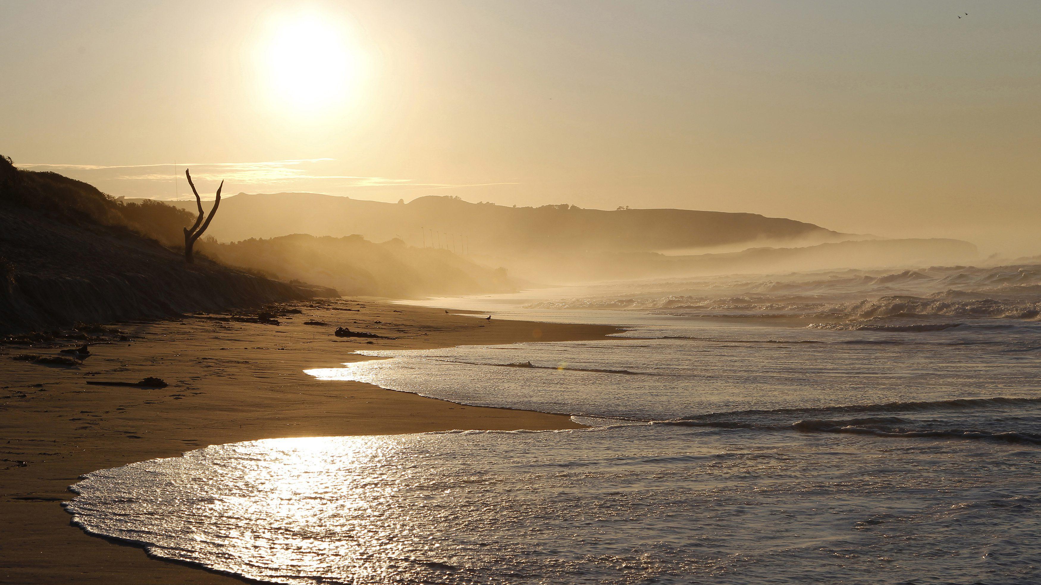 The sun rises over St. Clair beach in Dunedin