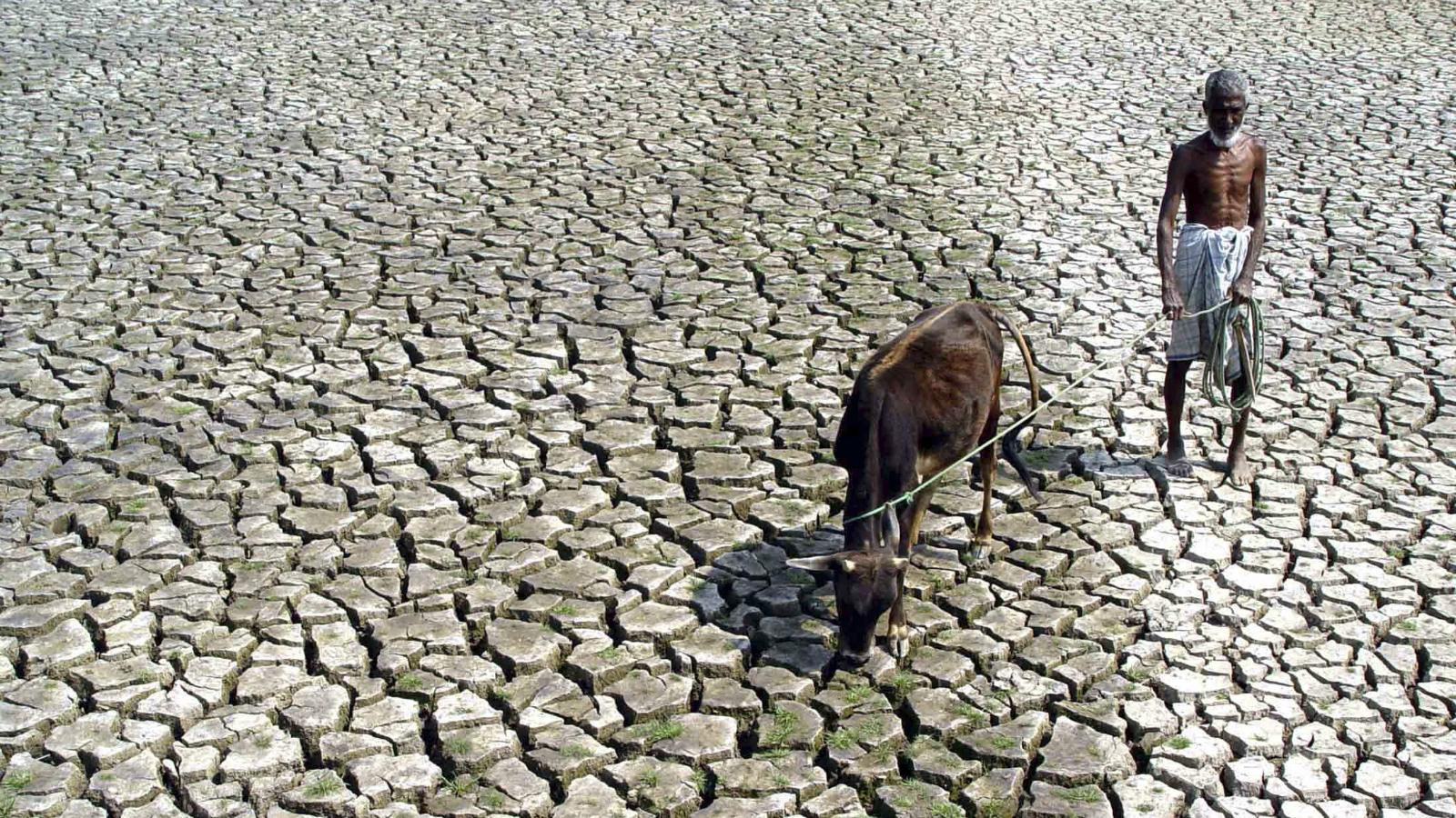Water-Monsoon-Summer-Save water