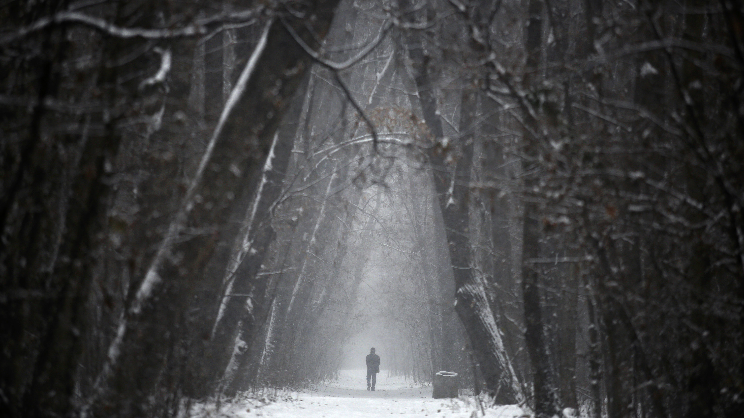 A man walks at a park during a snowfall in downtown Sofia December 11, 2012.