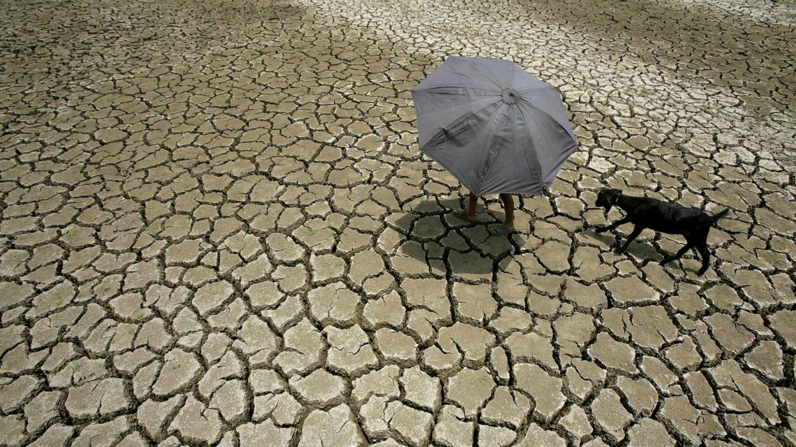 India-Monsoon-Rain-Modi