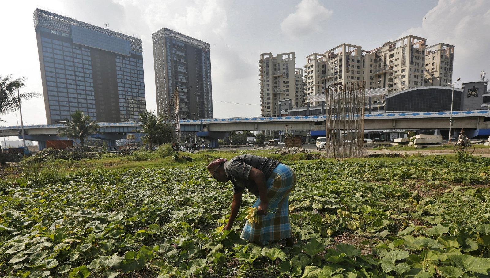 india-economy-industry-RBI