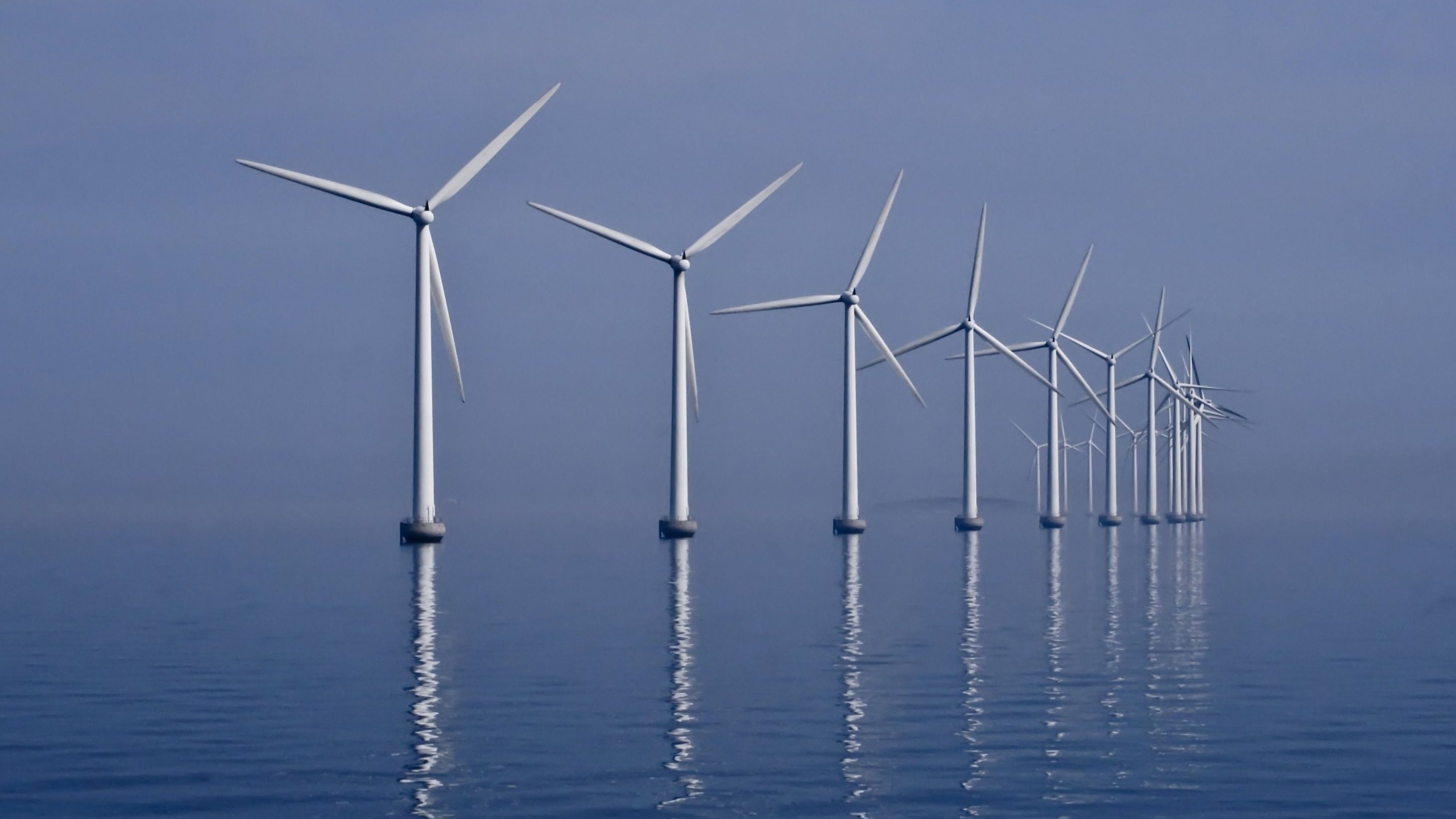 Germany Had So Much Renewable Energy On Sunday That It To Pay Wind Power Biomass People Use Electricity Quartz