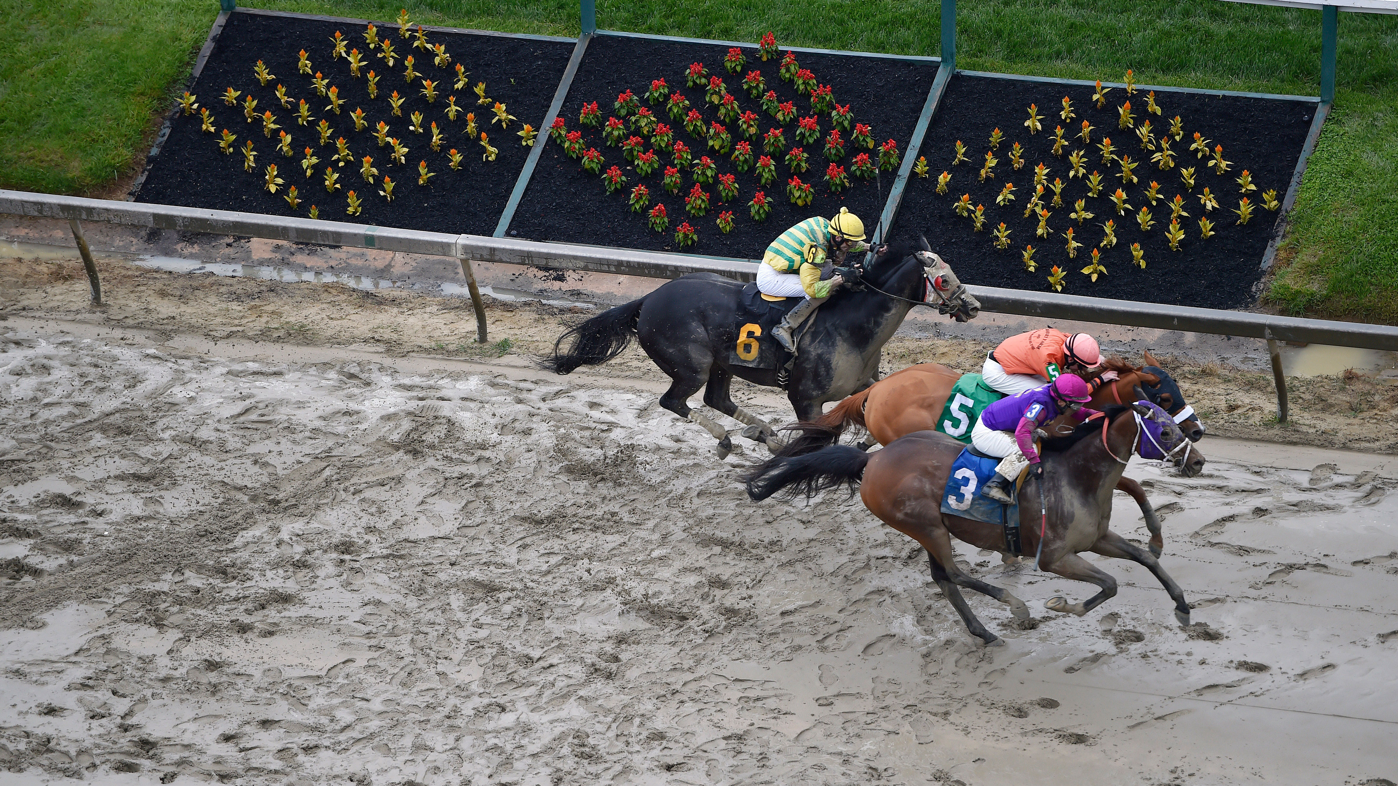 Homeboykris (3), ridden by Horacio Karamanos, wins the first race of the day on a muddy track ahead of the 141st Preakness Stakes horse race at Pimlico Race Course, Saturday, May 21, 2016, in Baltimore. (AP Photo/Mike Stewart)