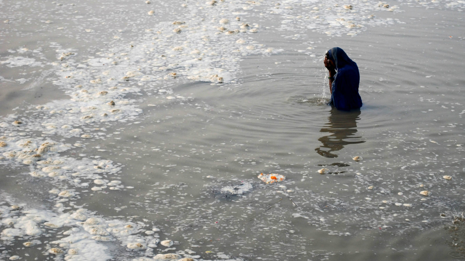 A Hindu woman devotee takes a holy dip in the polluted Sangam, confluence of three rivers, the Ganga, the Yamuna and mythical Saraswati, in the northern Indian city of Allahabad November 10, 2008. Industrial discharges, sewage, pesticides and the rotting remains of dead bodies have increased pollution levels in the Ganges over the years despite government promises to clean up India's most sacred river.
