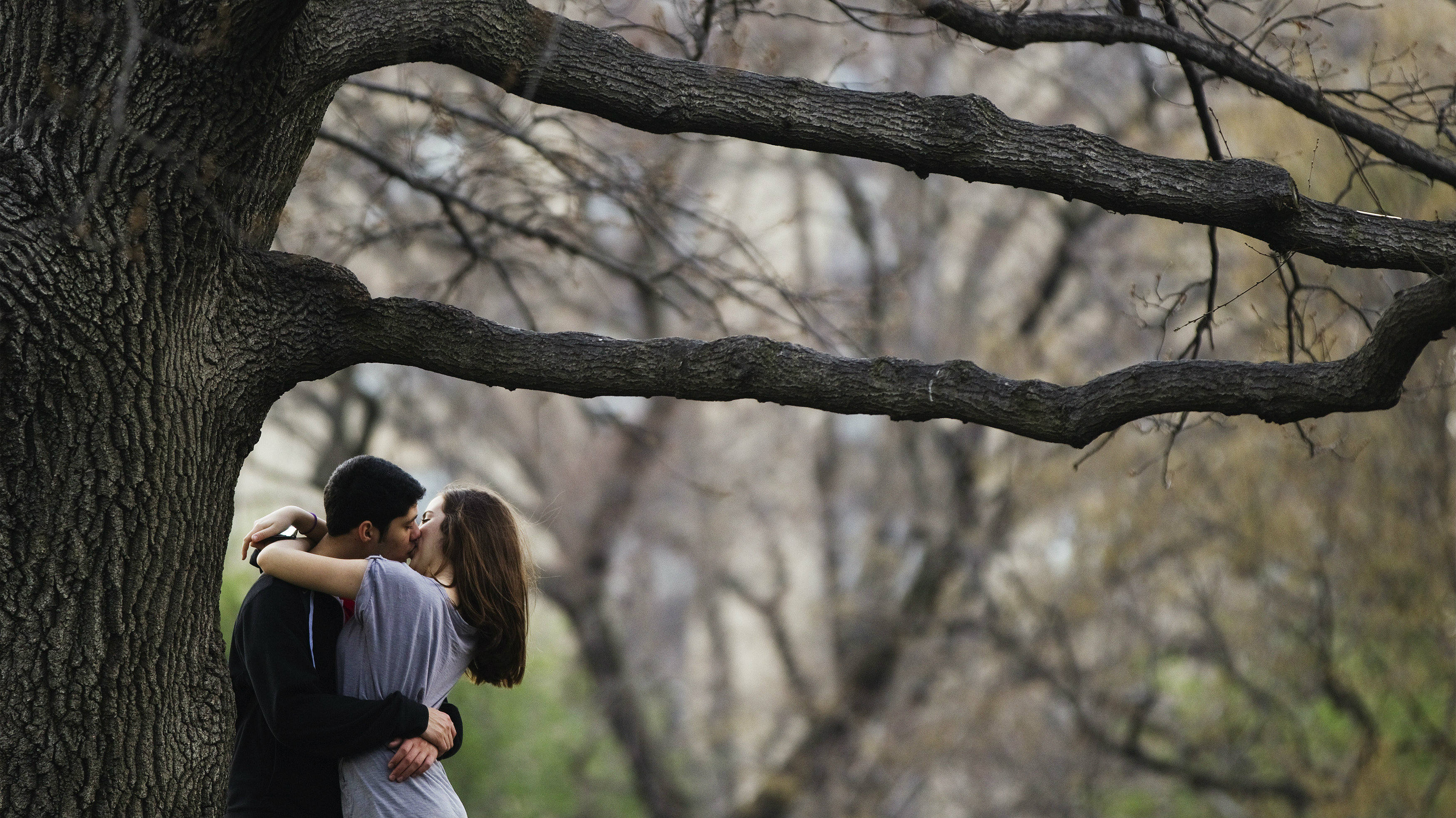 A couple kisses while standing underneath a tree inside Central Park during a warm day in New York.