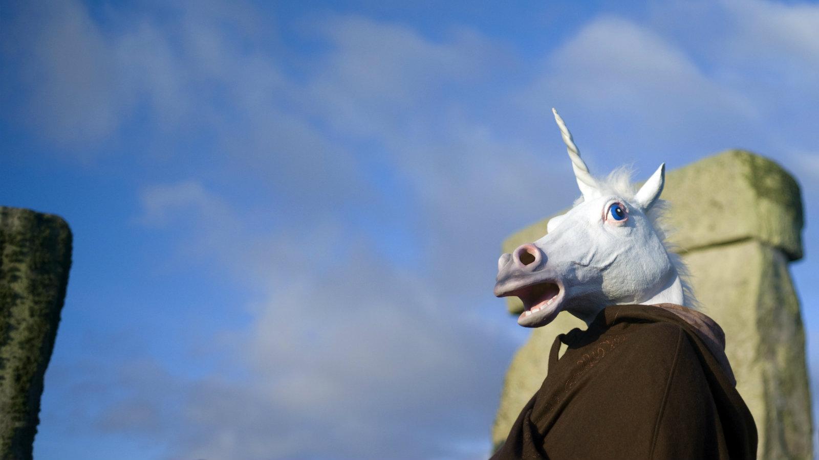 Unicorn-reveller