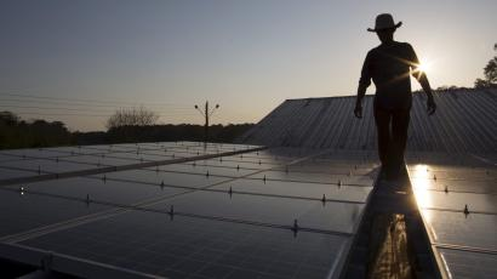 Man walking between solar panels.