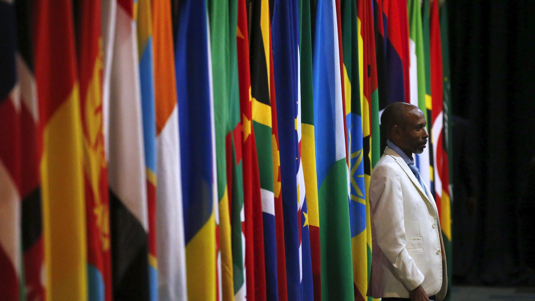 A visitor stands in front of flags representing different African countries during a Forum on China-Africa Cooperation in Sandton