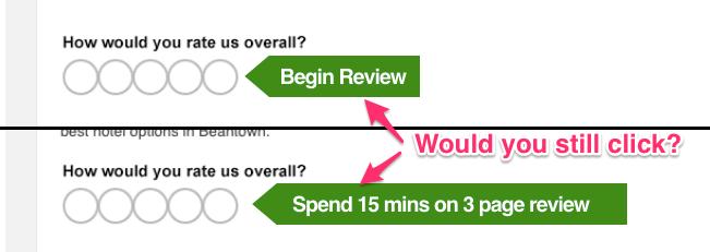 begin review prompt