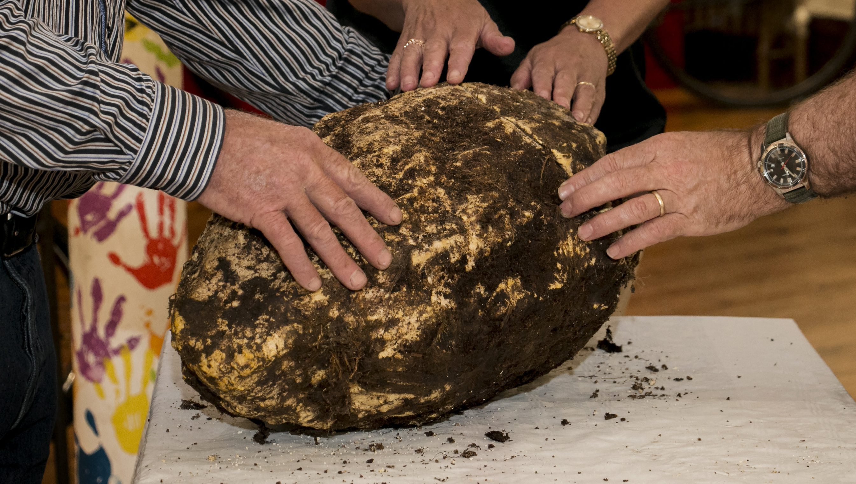 Bog Butter CCM 2 hands