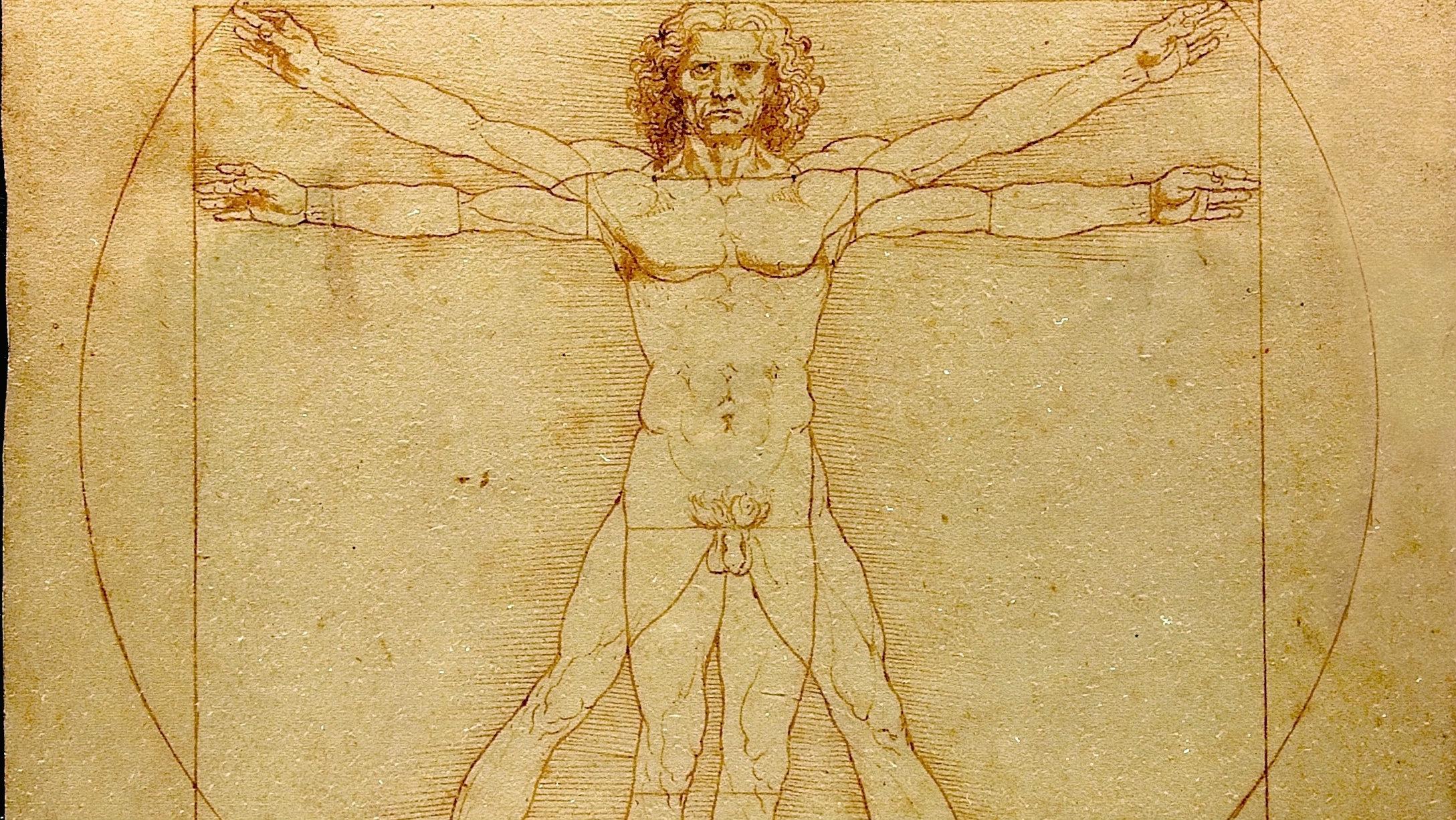 Leonardo da Vinci's Vitruvian Man.