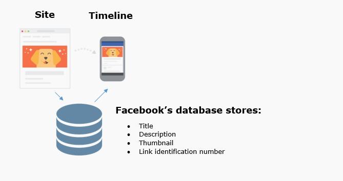 facebook database