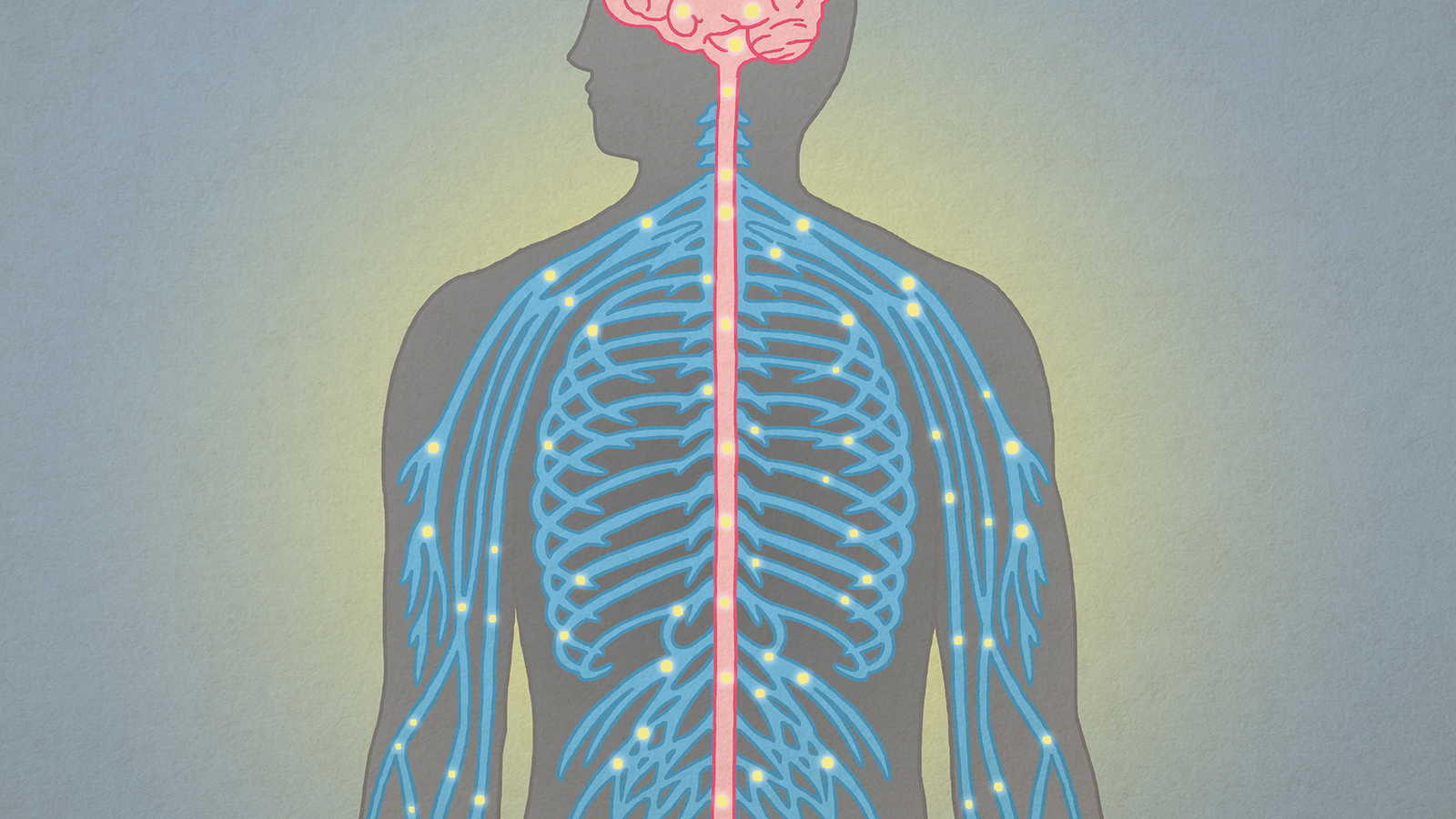 Gene therapy could provide a cure for Friedreich's Ataxia, a rare degenerative illness.