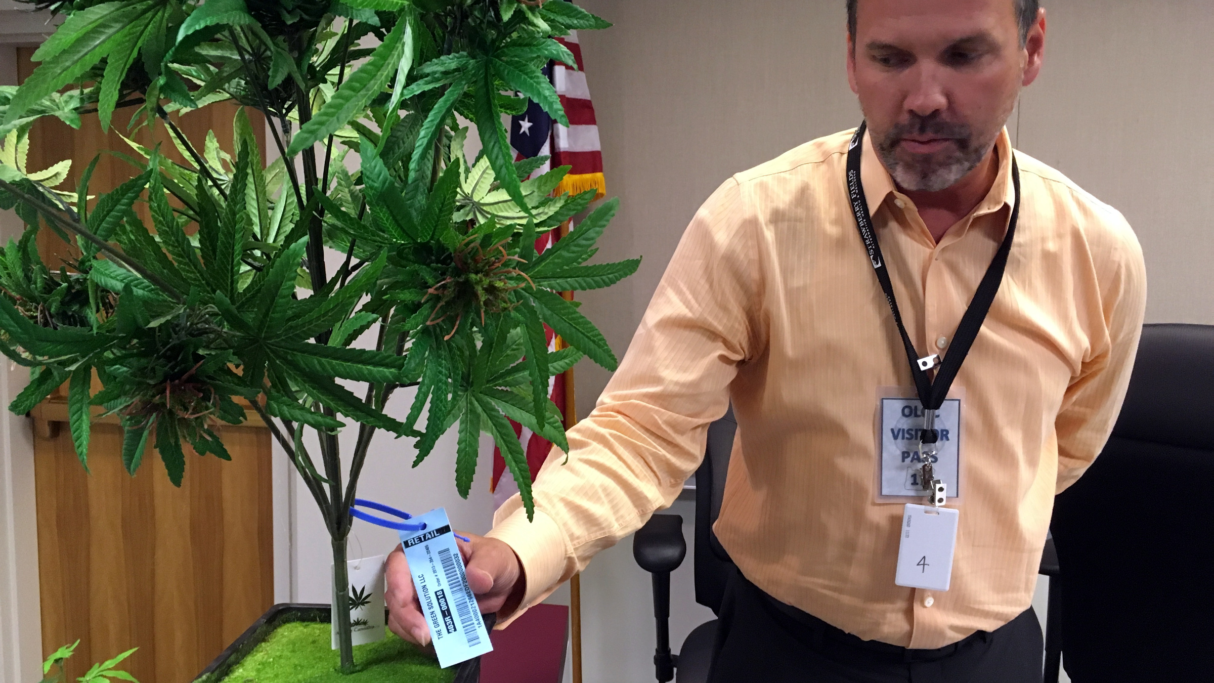 CORRECTS SPELLING OF COMPANY NAME TO METRC INSTEAD OF METRICS - In this Wednesday, May 15, 2016 photo, Todd Golden, associate director of metrc, displays a sample tag which can be scanned by radio-frequency identification devices, on an artificial marijuana plant at the Oregon Liquor Commission offices in Portland, Ore. After months of public hearings with pot growers, lawmen, public health officials and others, the Oregon Liquor Control Commission is racing to finalize recreational marijuana regulations and issue licenses to hundreds of businesses within a few months. ()