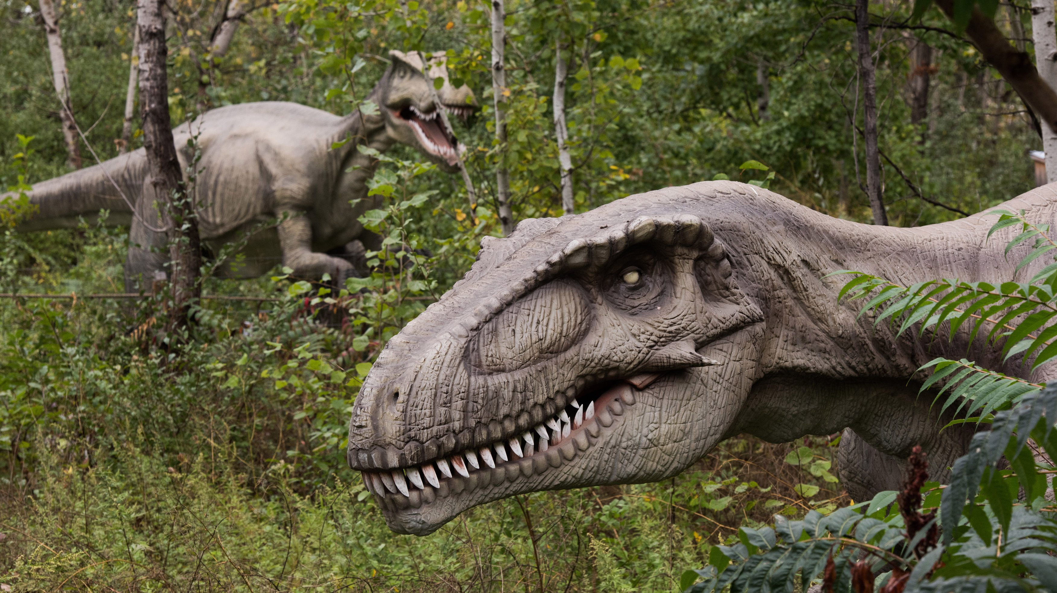 Field Station: Dinosaurs in New Jersey