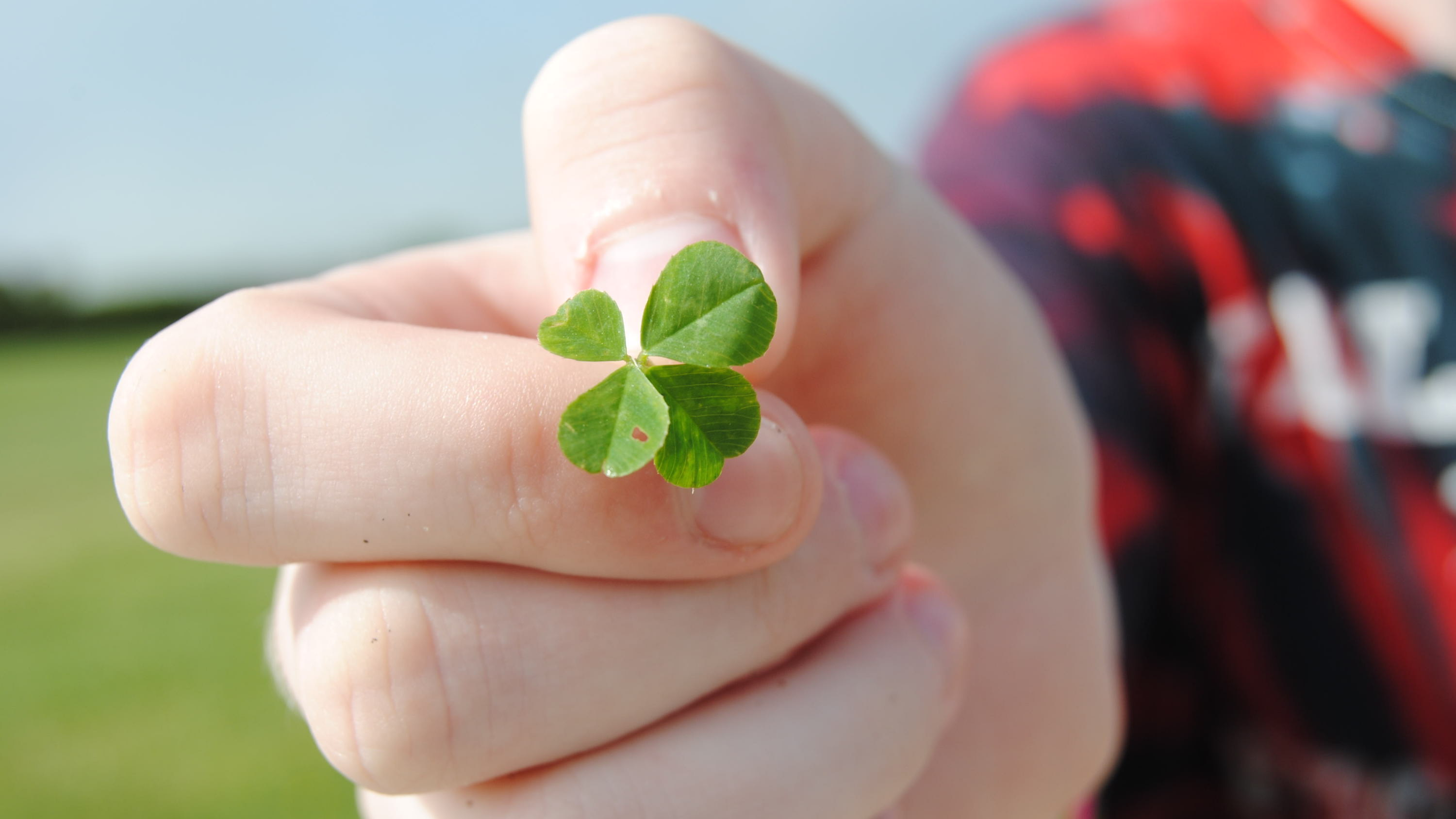 A Cornell Economist Who Studies Luck Says The More You Acknowledge