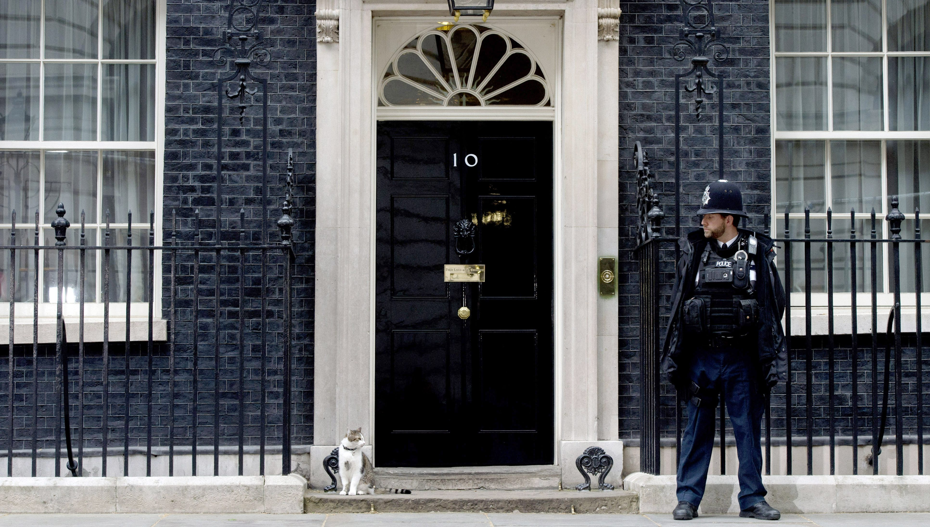 Chief Mouser to the Cabinet Office, Larry