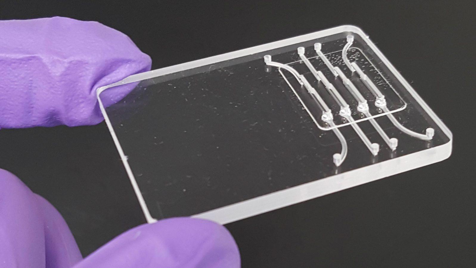 Zika virus testing plate
