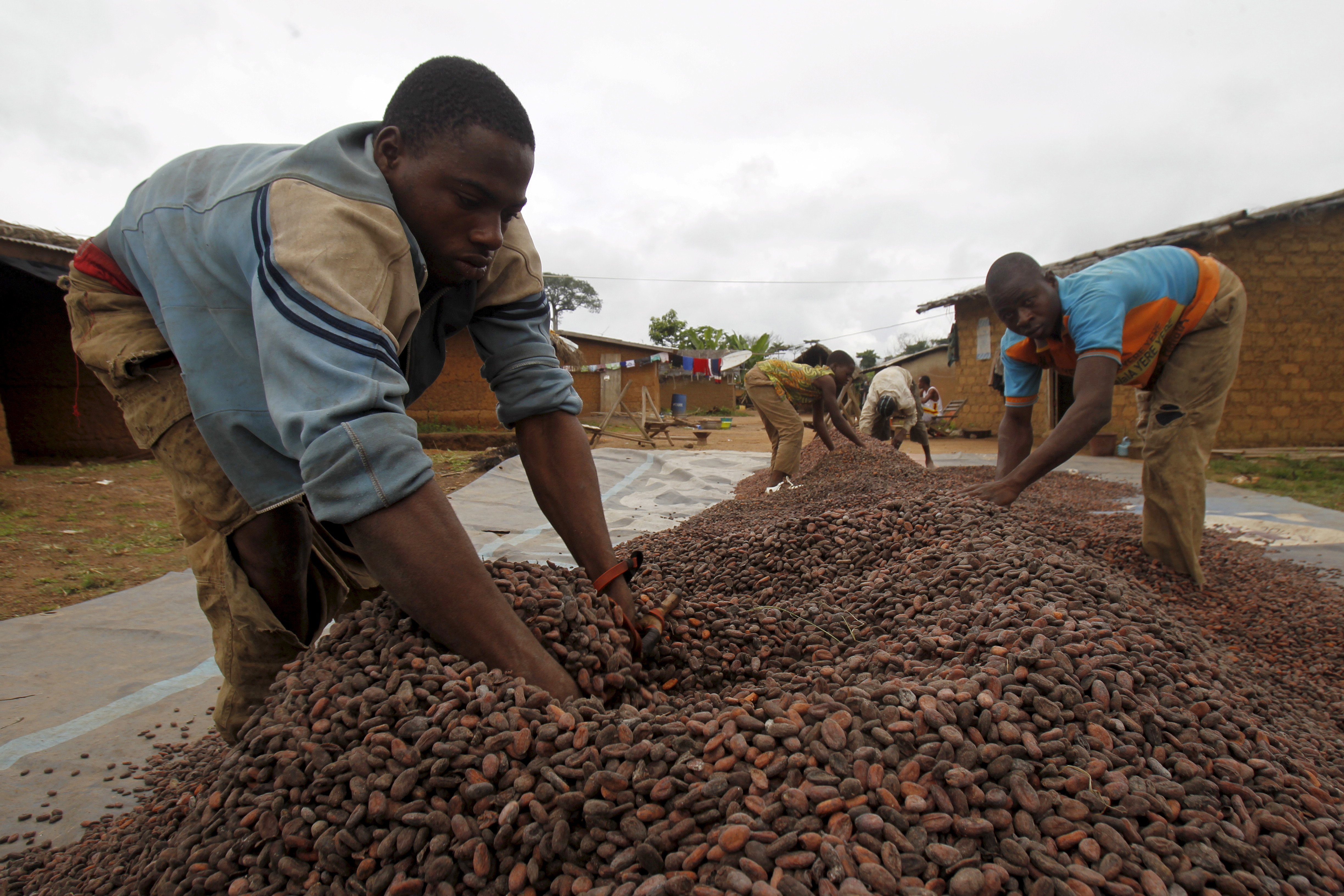 Infrastructure, funding, corruption and bureaucracy pose huge obstacles to boosting Africa's farmers.