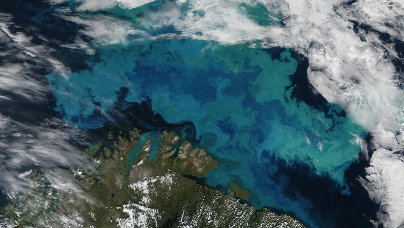QnA VBage Climate change is altering the color of the oceans